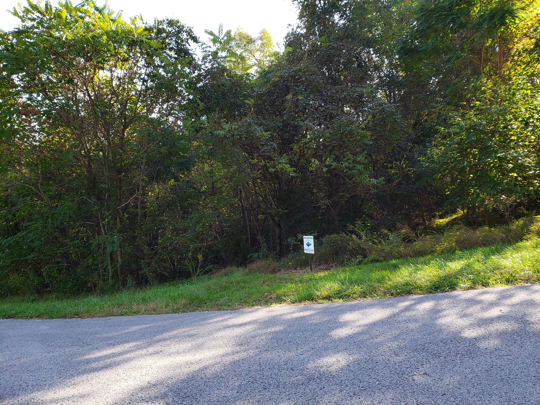Lot 854 Wildcat Hollow Rd: