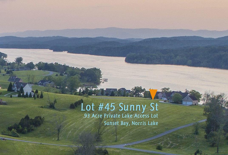 Lot 45 Sunny St: