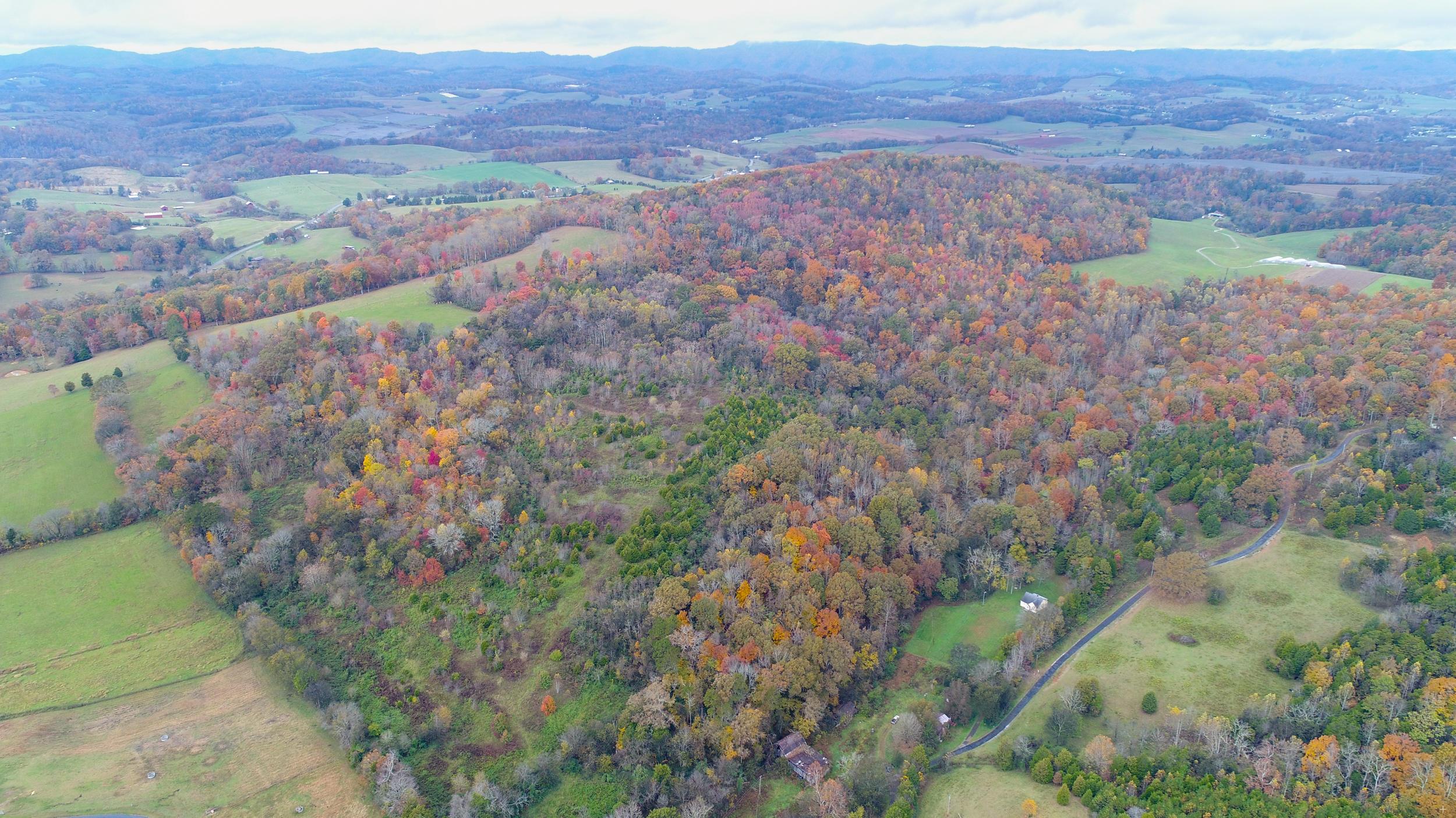 476 Burkhart, Rutledge, Tennessee, United States 37861, ,Lots & Acreage,For Sale,Burkhart,1062083