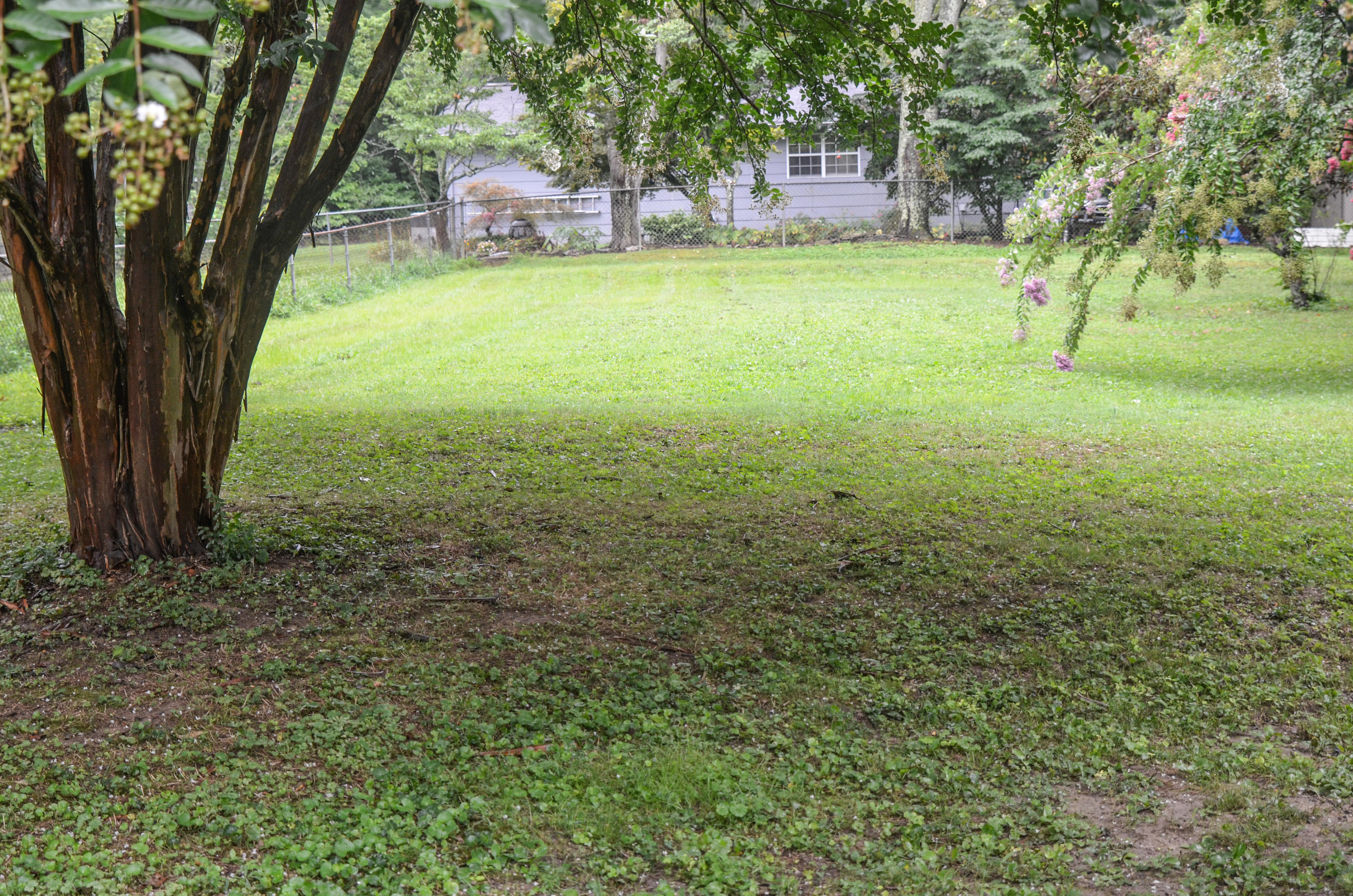 307 Ridgeview, Oliver Springs, Tennessee, United States 37840, 3 Bedrooms Bedrooms, ,2 BathroomsBathrooms,Single Family,For Sale,Ridgeview,1062119