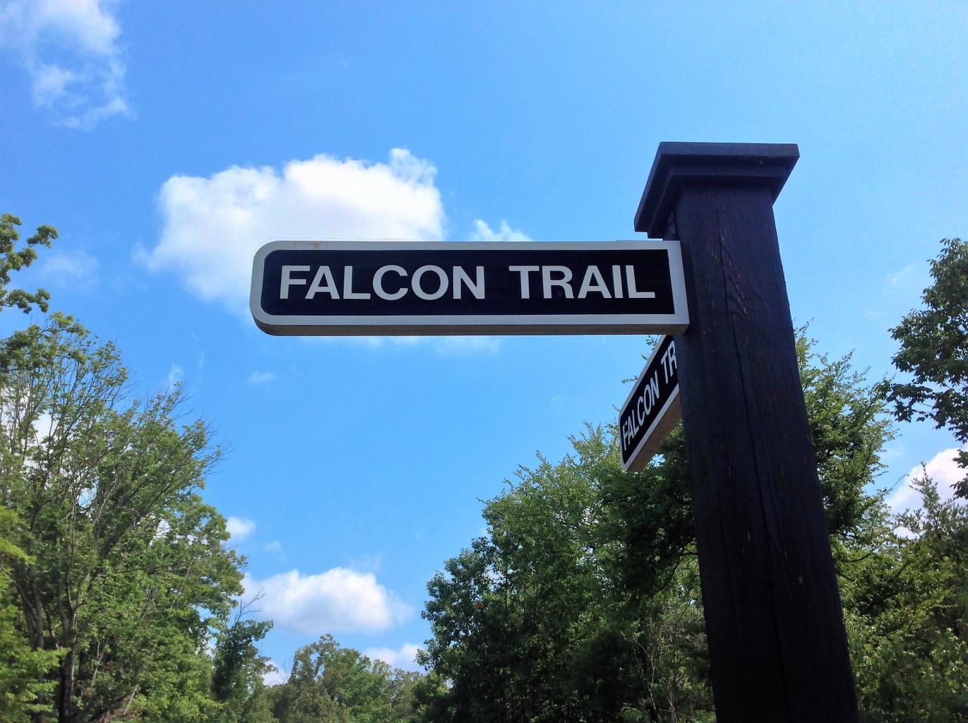 Falcon Trail Lot 33 Tr: