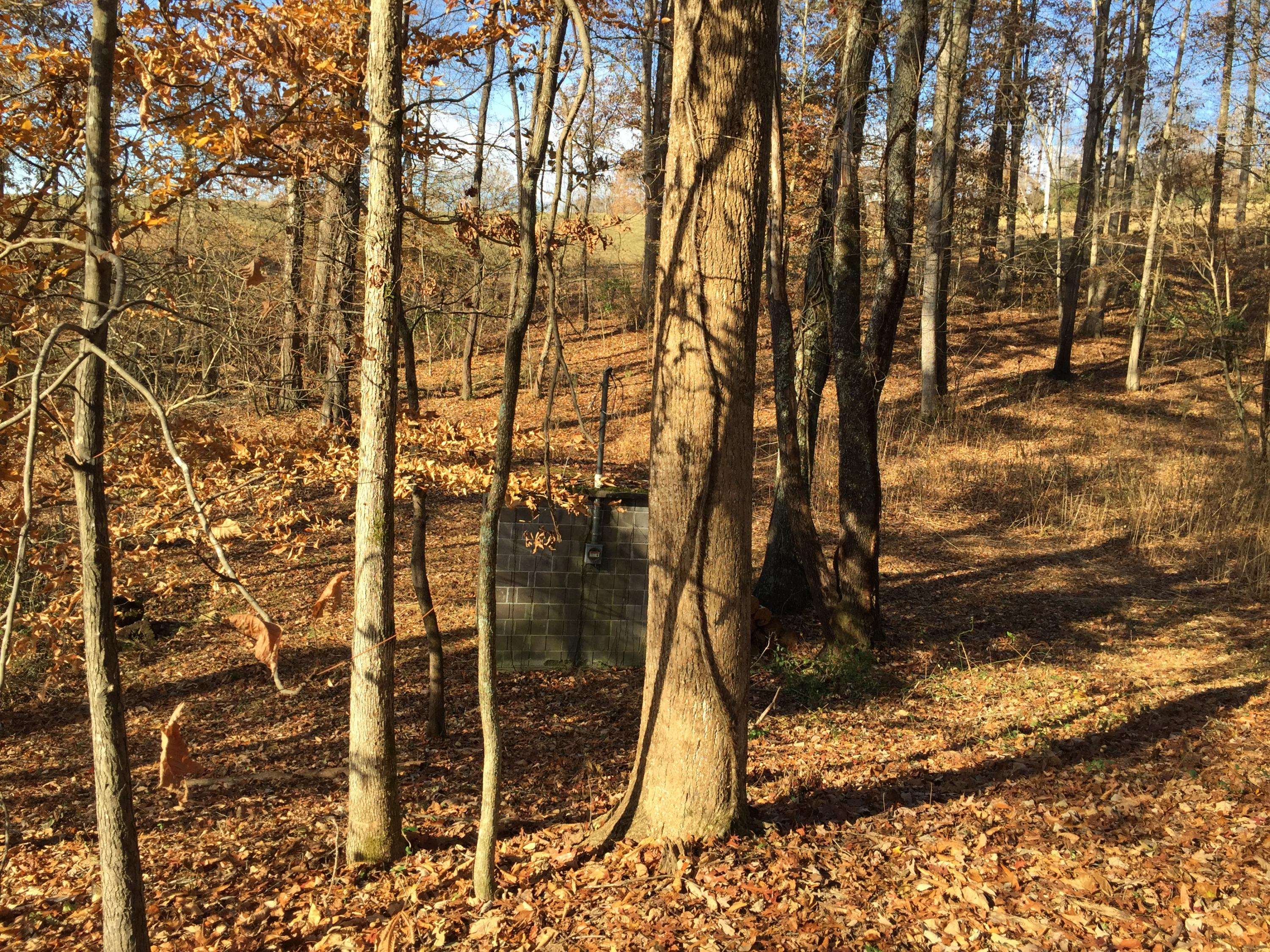 Hubbs Grove, Maynardville, Tennessee, United States 37807, ,Lots & Acreage,For Sale,Hubbs Grove,1063274