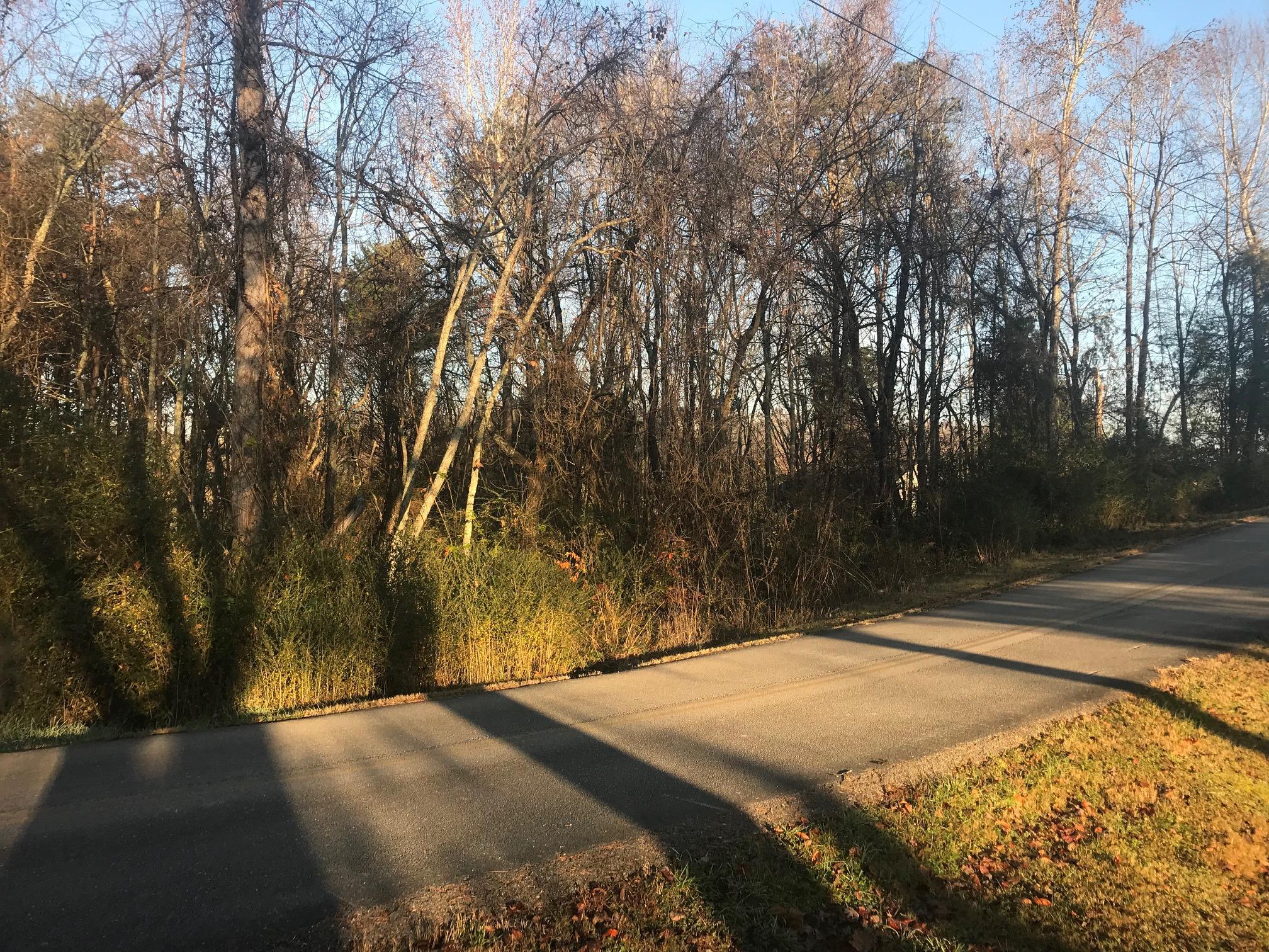 Arrowhead Trail, Lot 53/54, Kingston, Tennessee, United States 37763, ,Lots & Acreage,For Sale,Arrowhead Trail, Lot 53/54,1063518