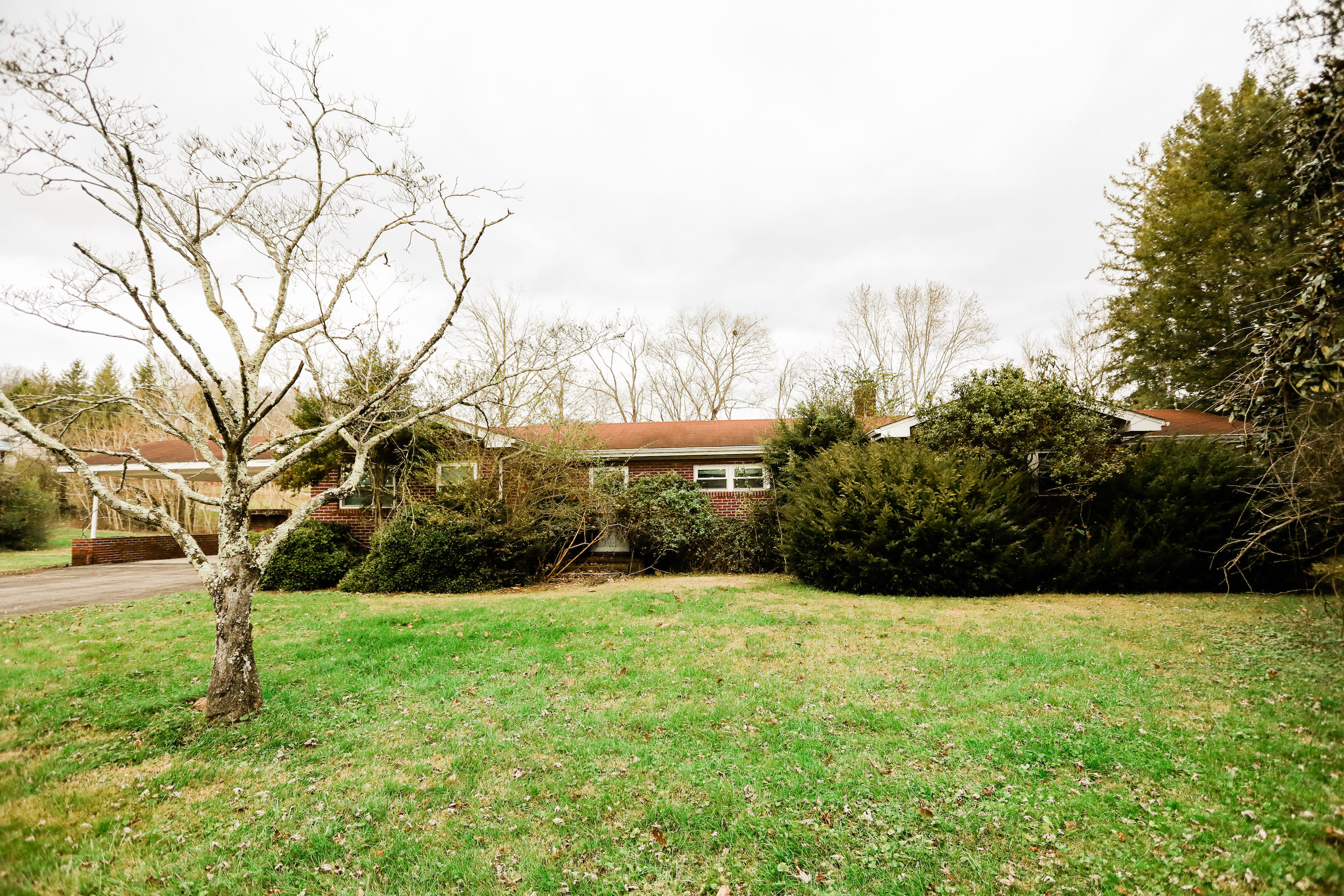 St. John'S Place Place, Harrogate, Tennessee 37752, ,Commercial,For Sale,St. John'S Place,1063602