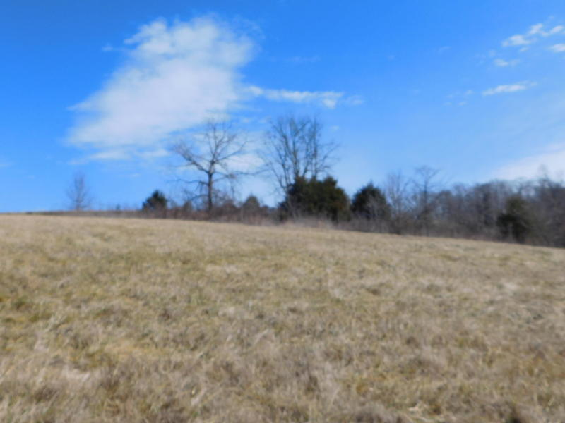 Lot 509 Brittney Lane: