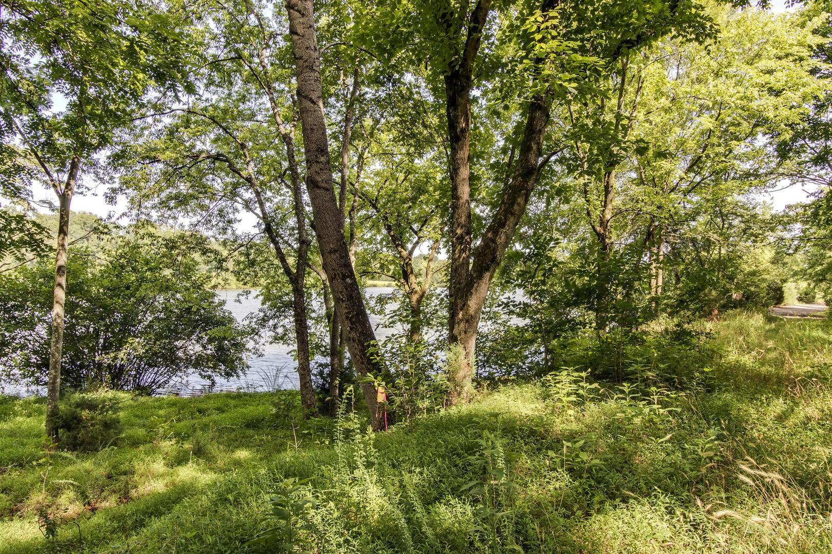 Didodi Trail: