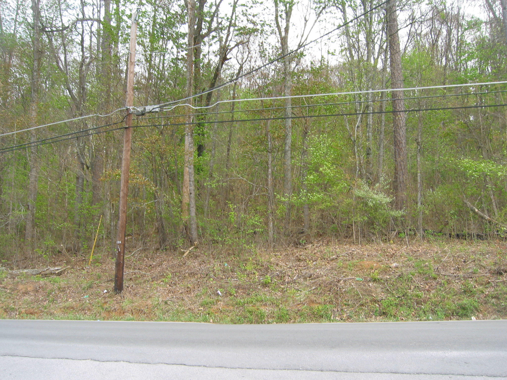 2990 Rifle Range Rd, Knoxville, Tennessee 37918, ,Lots & Acreage,For Sale,Rifle Range,1065094