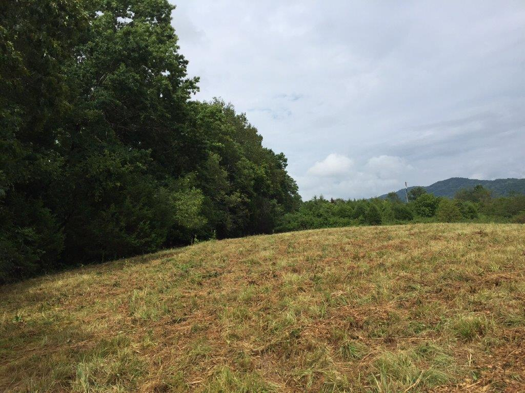 Lot 1 Hickory Valley Rd: