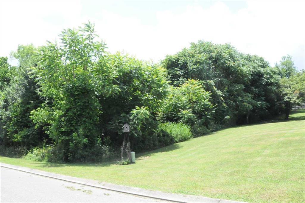 Lot 63 Fairmont Drive, Dayton, Tennessee 37321, ,Lots & Acreage,For Sale,Fairmont,1066955