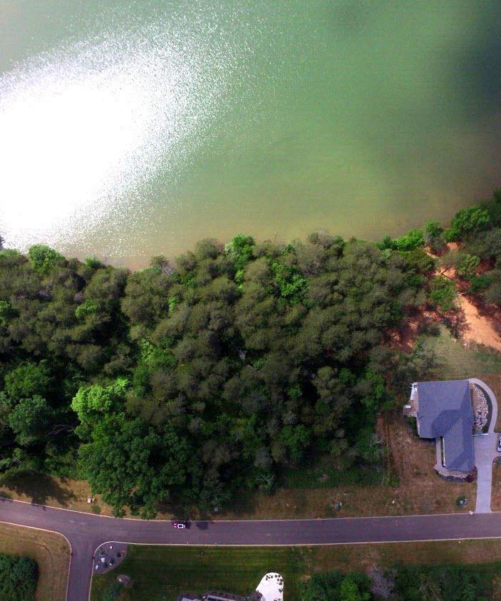 Lot 51 Falcon Trail: