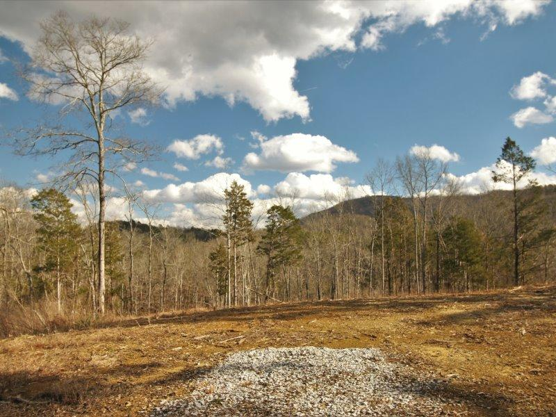 341 County Rd. 481- Englewood- Tennessee- United States 37329, ,Lots & Acreage,For Sale,341 County Rd. 481,1066956