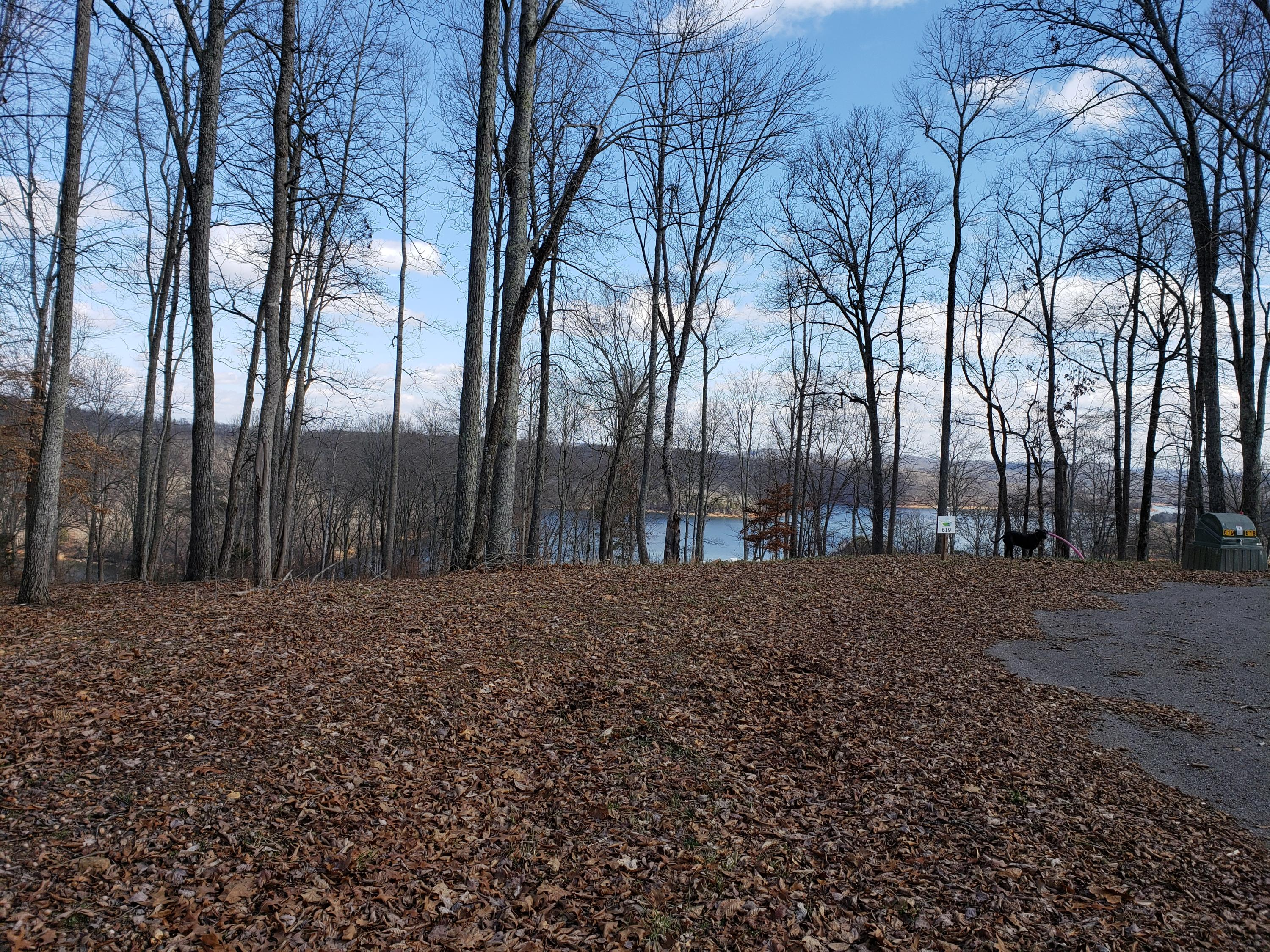 620 Prestige Ridge- Lafollette- Tennessee 37766, ,Lots & Acreage,For Sale,Prestige Ridge,1068147