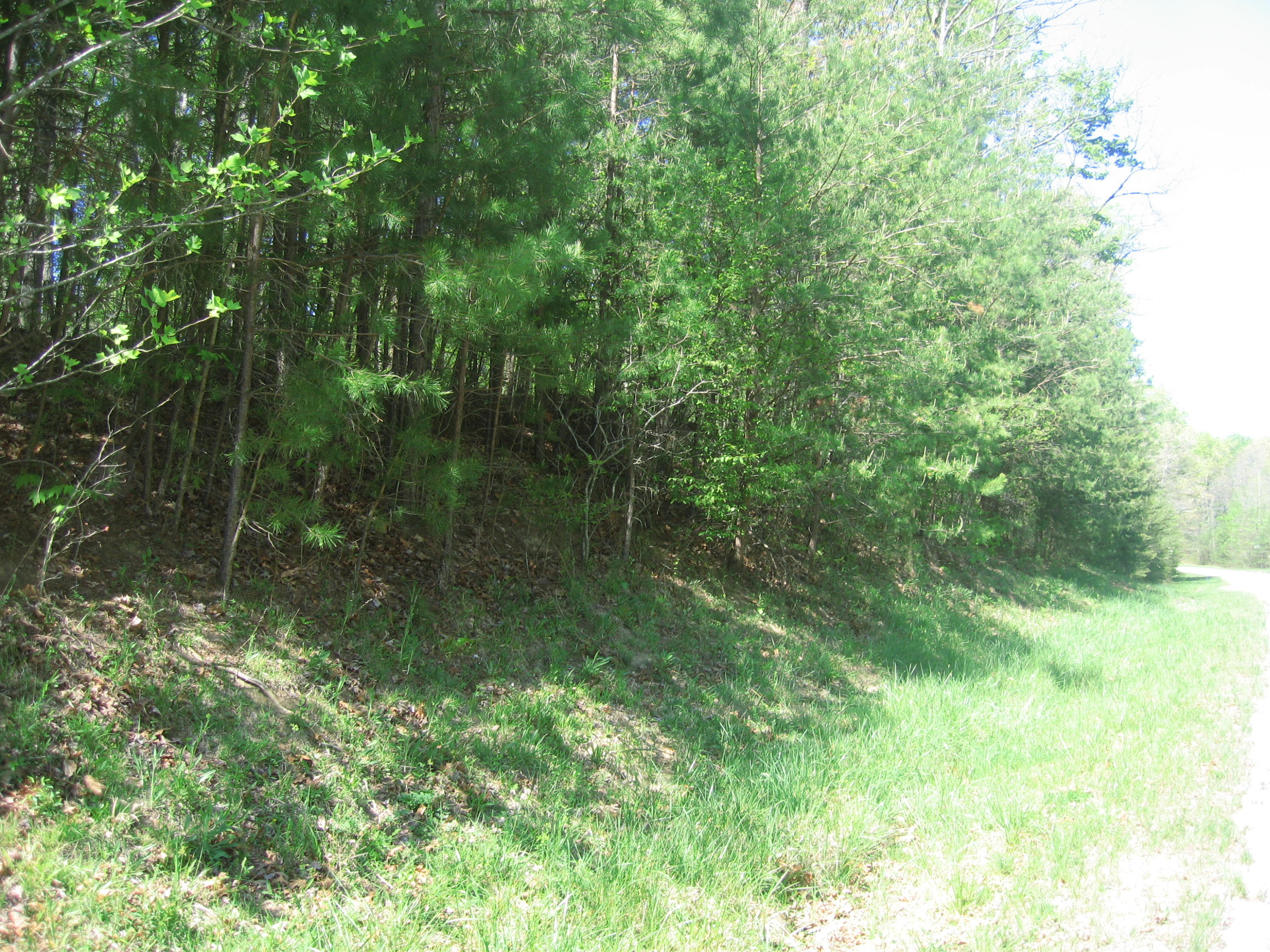E. Overlook- Monterey- Tennessee- United States 38574, ,Lots & Acreage,For Sale,E. Overlook,1068217