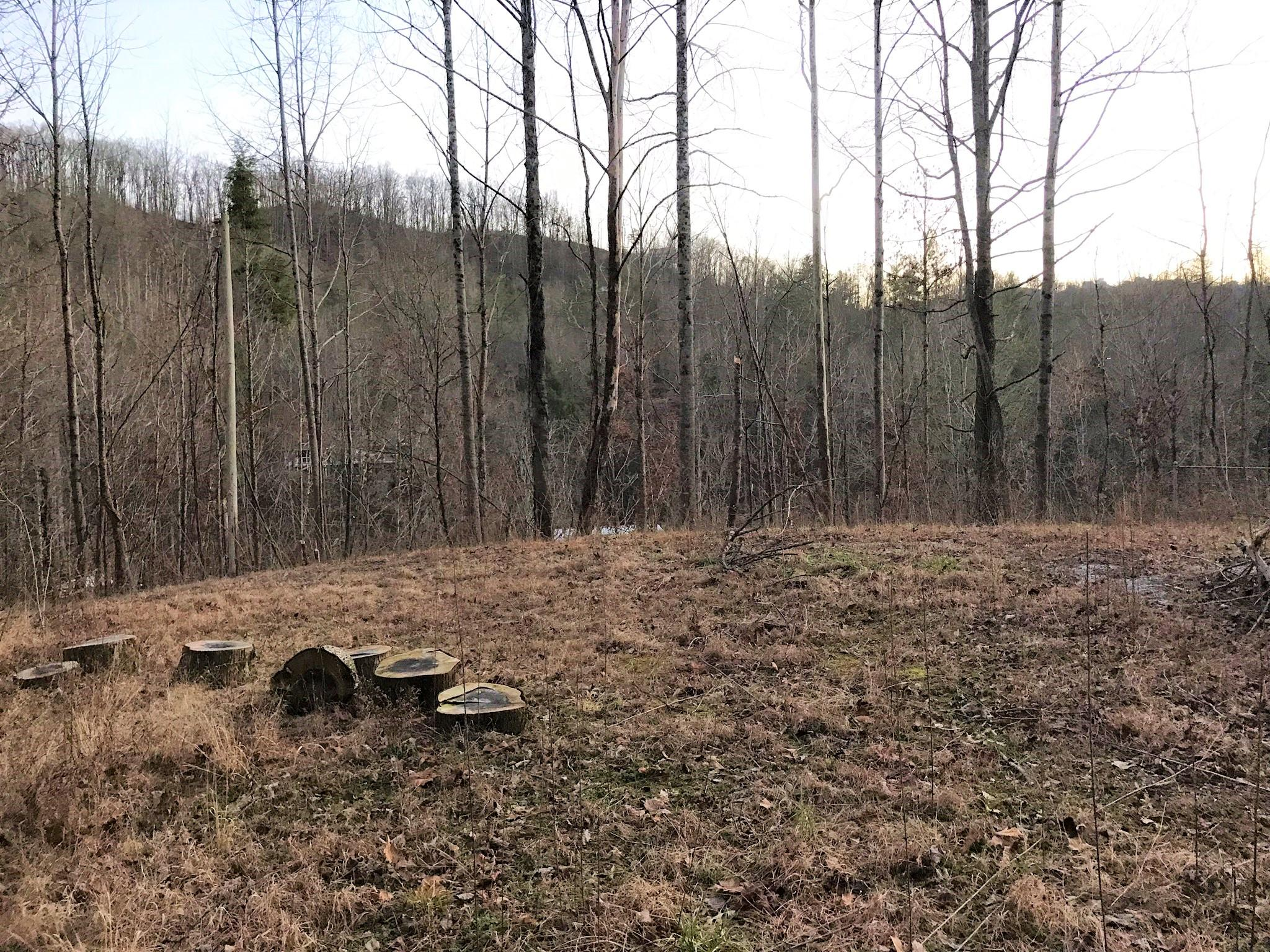 1205 Maples Manor- Gatlinburg- Tennessee- United States 37738, ,Lots & Acreage,For Sale,Maples Manor,1068255