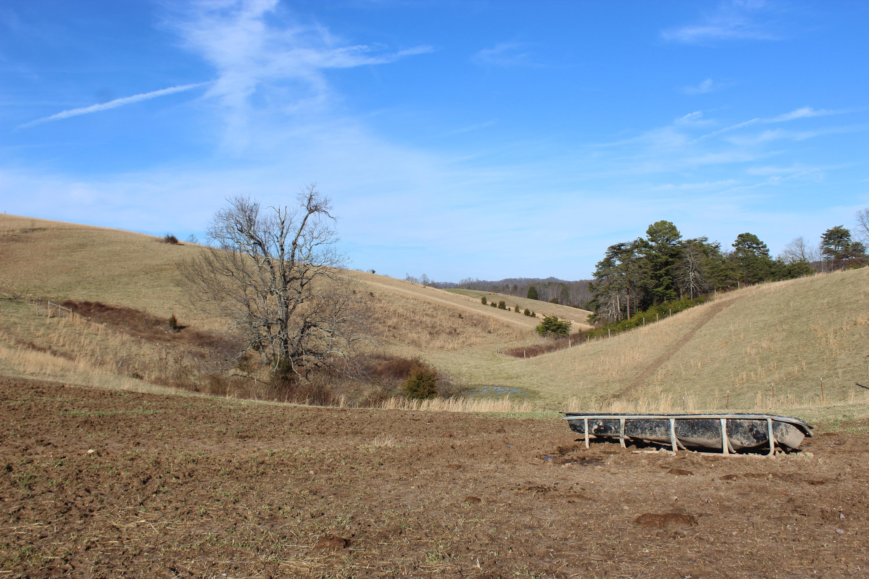 Collins Ridge Rd, Washburn, Tennessee 37888, ,Lots & Acreage,For Sale,Collins Ridge,1069367