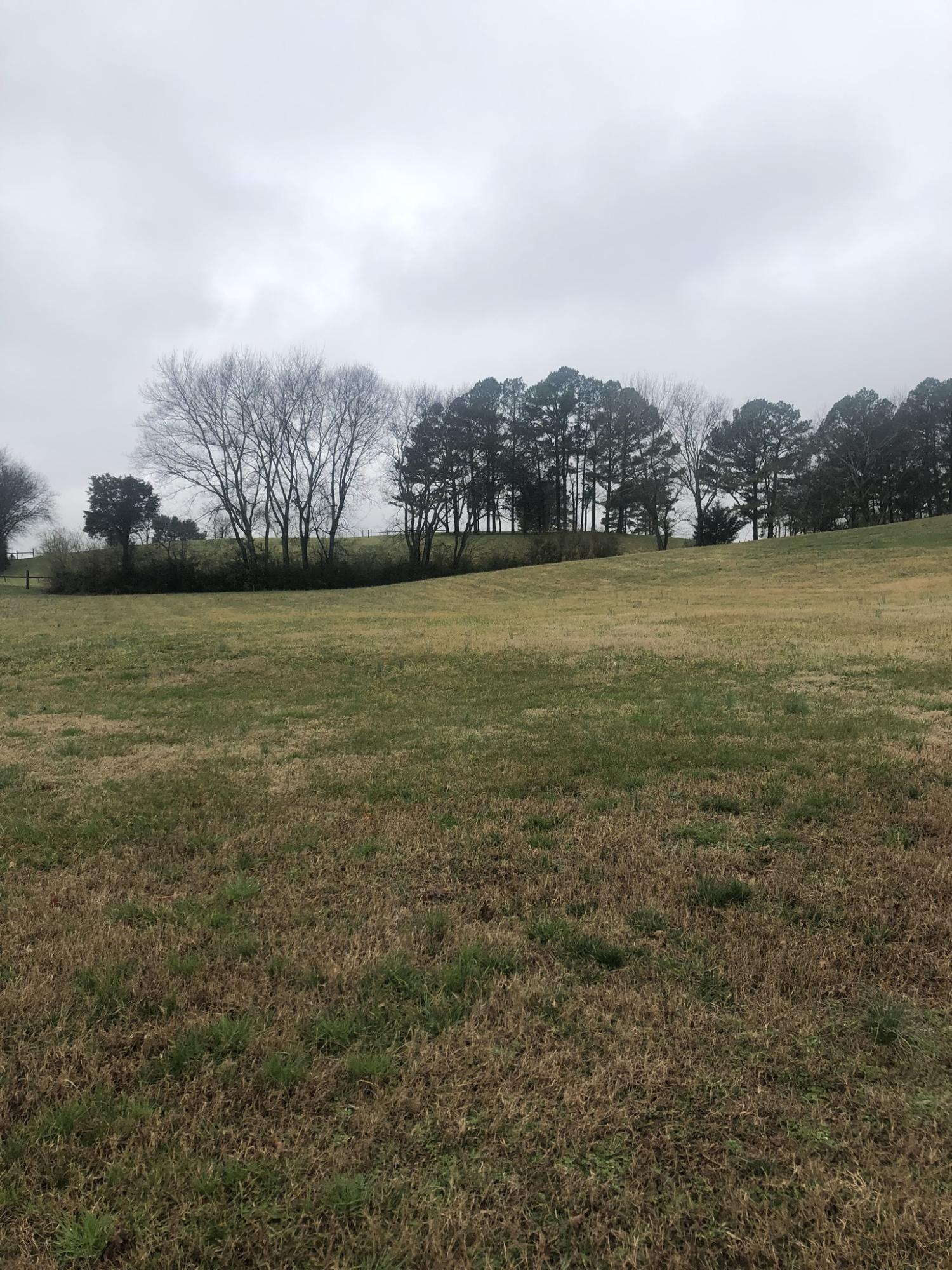 5004 Candlewood Court, Maryville, Tennessee 37804, ,Lots & Acreage,For Sale,Candlewood,1069430