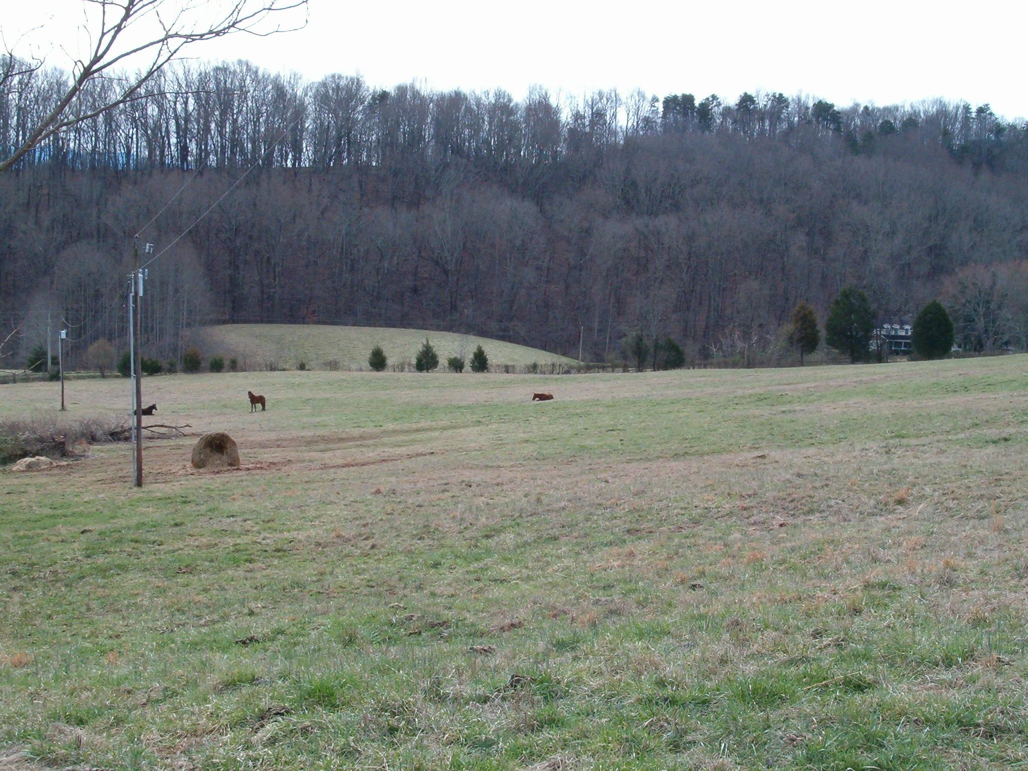 369 Craighead Rd, Madisonville, Tennessee 37354, 3 Bedrooms Bedrooms, ,3 BathroomsBathrooms,Single Family,For Sale,Craighead,1069898