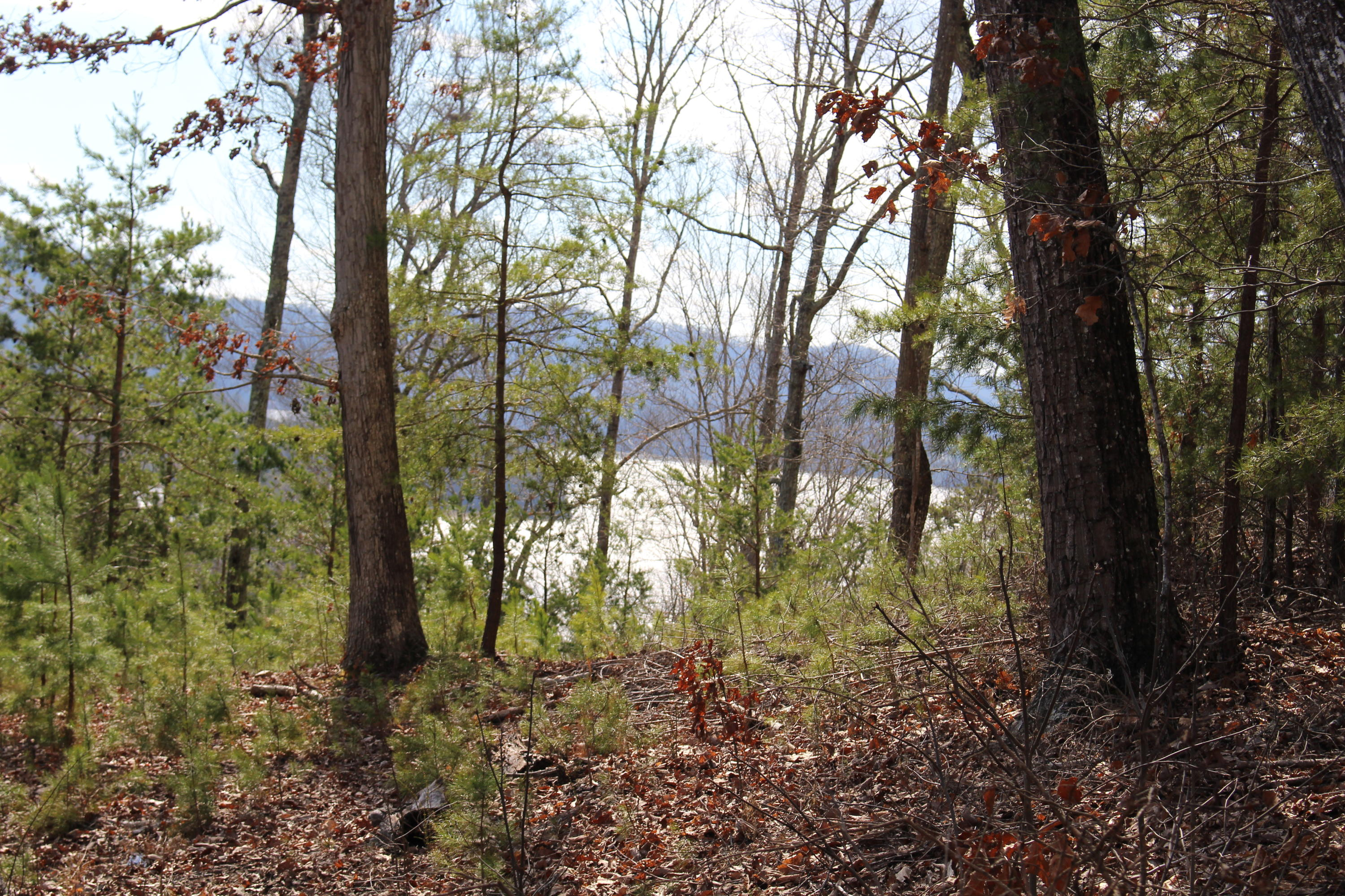 Lot 156 Lakeview Drive