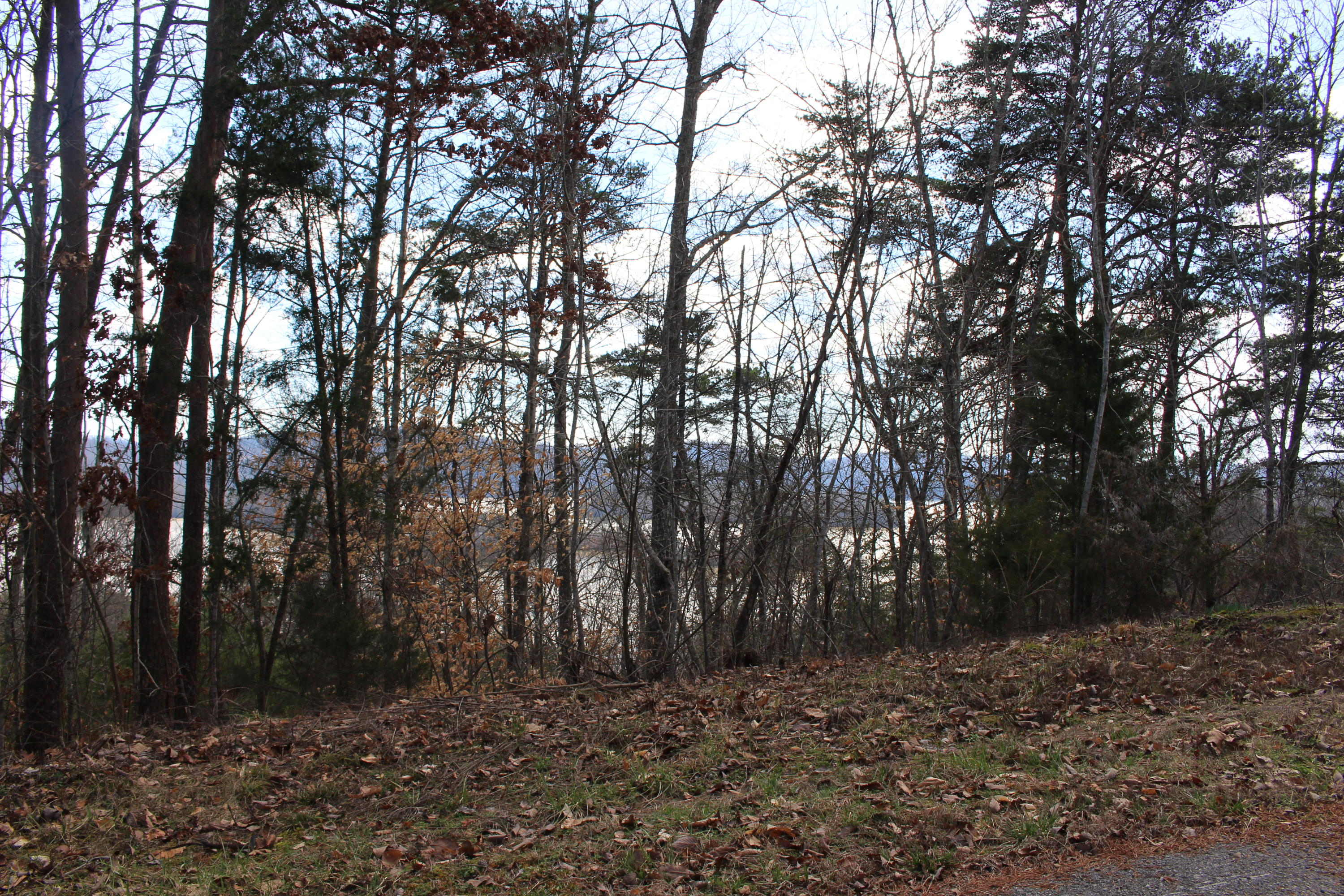 Lot 156 Lakeview Drive: