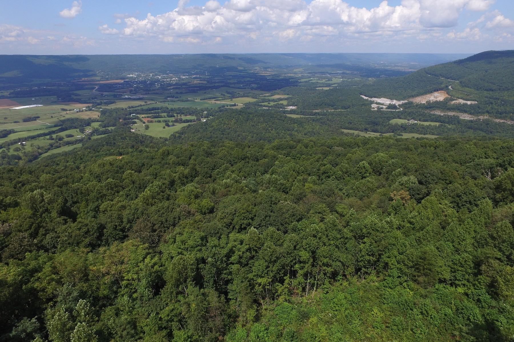 Rigsby Gap Rd, Pikeville, Tennessee 37367, ,Lots & Acreage,For Sale,Rigsby Gap,1073134