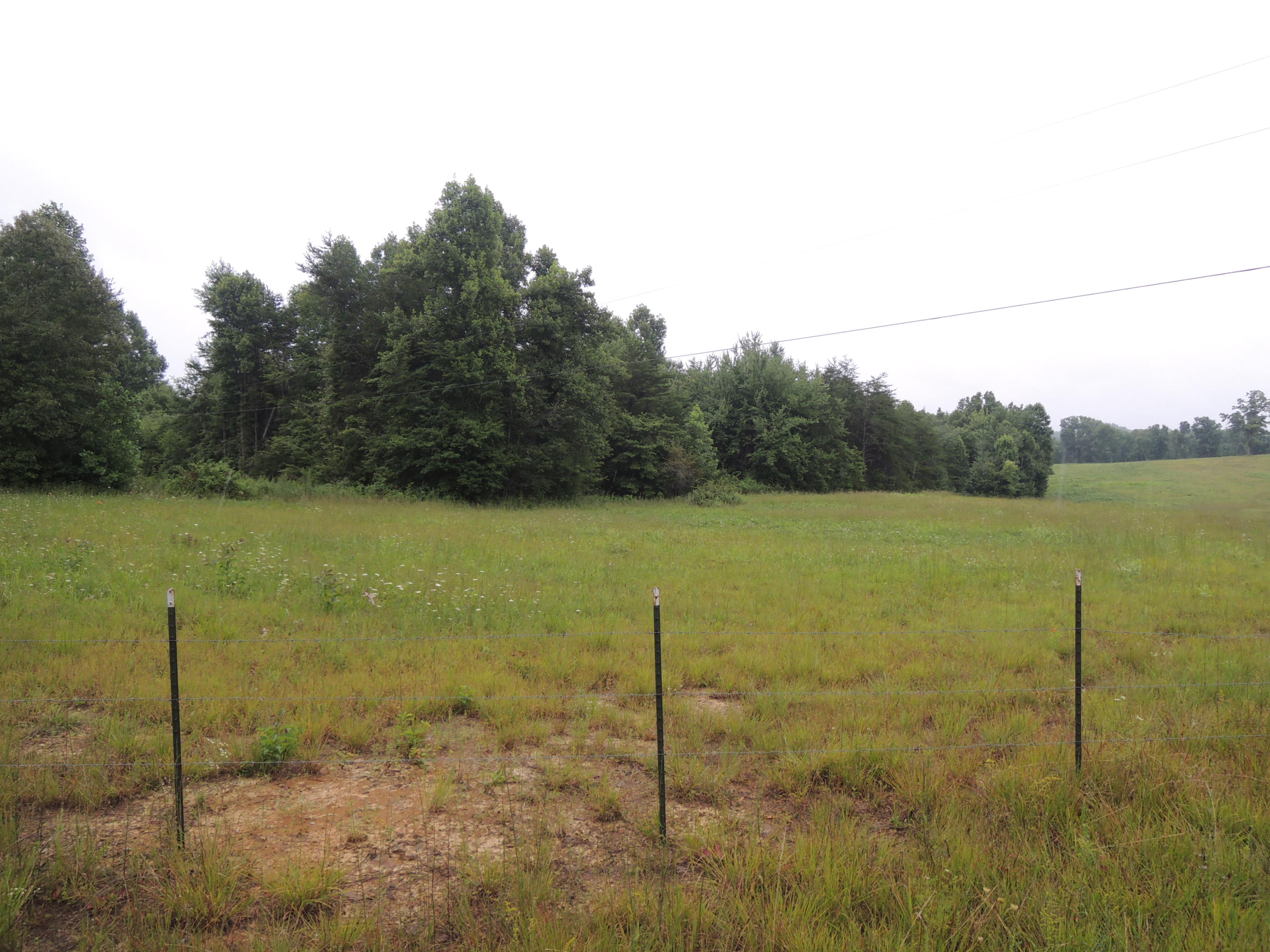 Coon Creek Rd, Sunbright, Tennessee 37872, ,Lots & Acreage,For Sale,Coon Creek,1073083