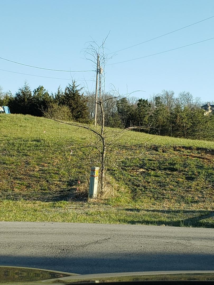 Byrd Farm Lane, Kodak, Tennessee 37764, ,Lots & Acreage,For Sale,Byrd Farm,1072177
