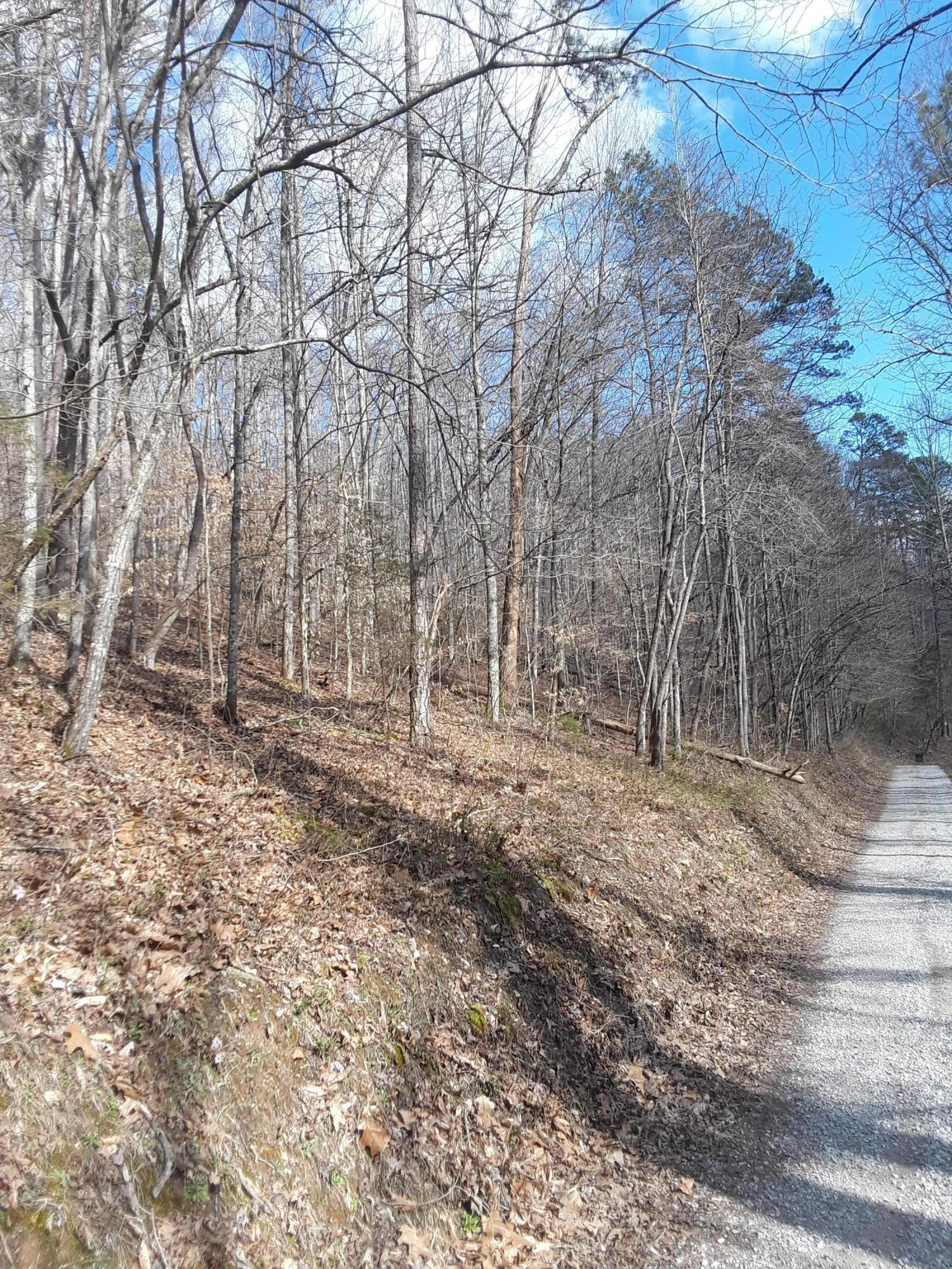 Robinson Rd, New Tazewell, Tennessee 37825, ,Lots & Acreage,For Sale,Robinson,1074082