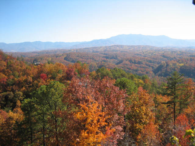 1962 Fox View Lane, Sevierville, Tennessee 37876, ,Lots & Acreage,For Sale,Fox View,1074571