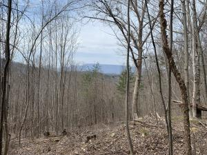 Photo for Eagle Mountain Road WayLot 4 & 6