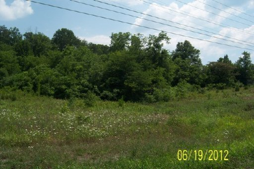 2135 Highway 411, Vonore, Tennessee 37885, ,Commercial,For Sale,Highway 411,1075578