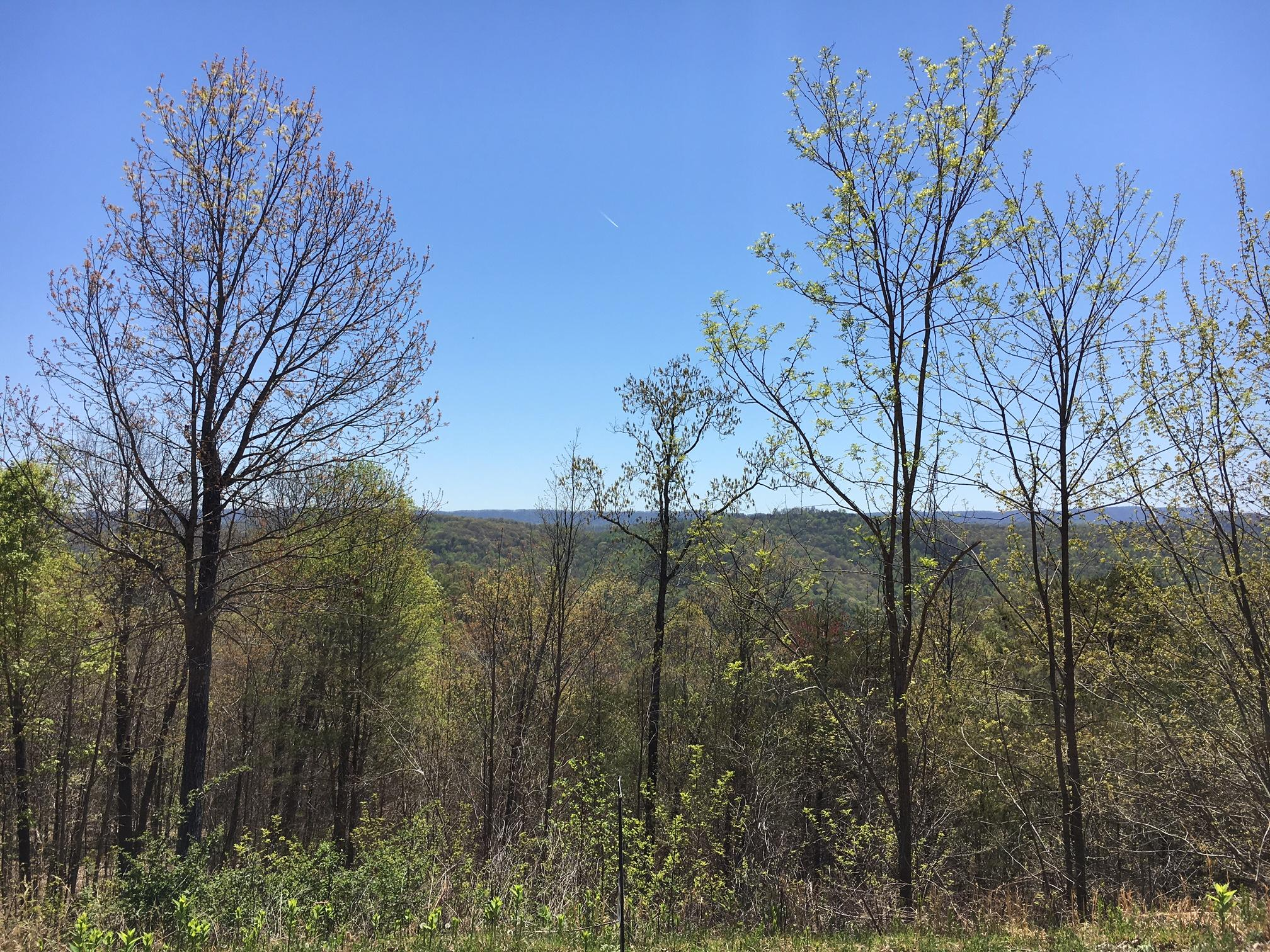 Lot 540 Timber Creek Rd: