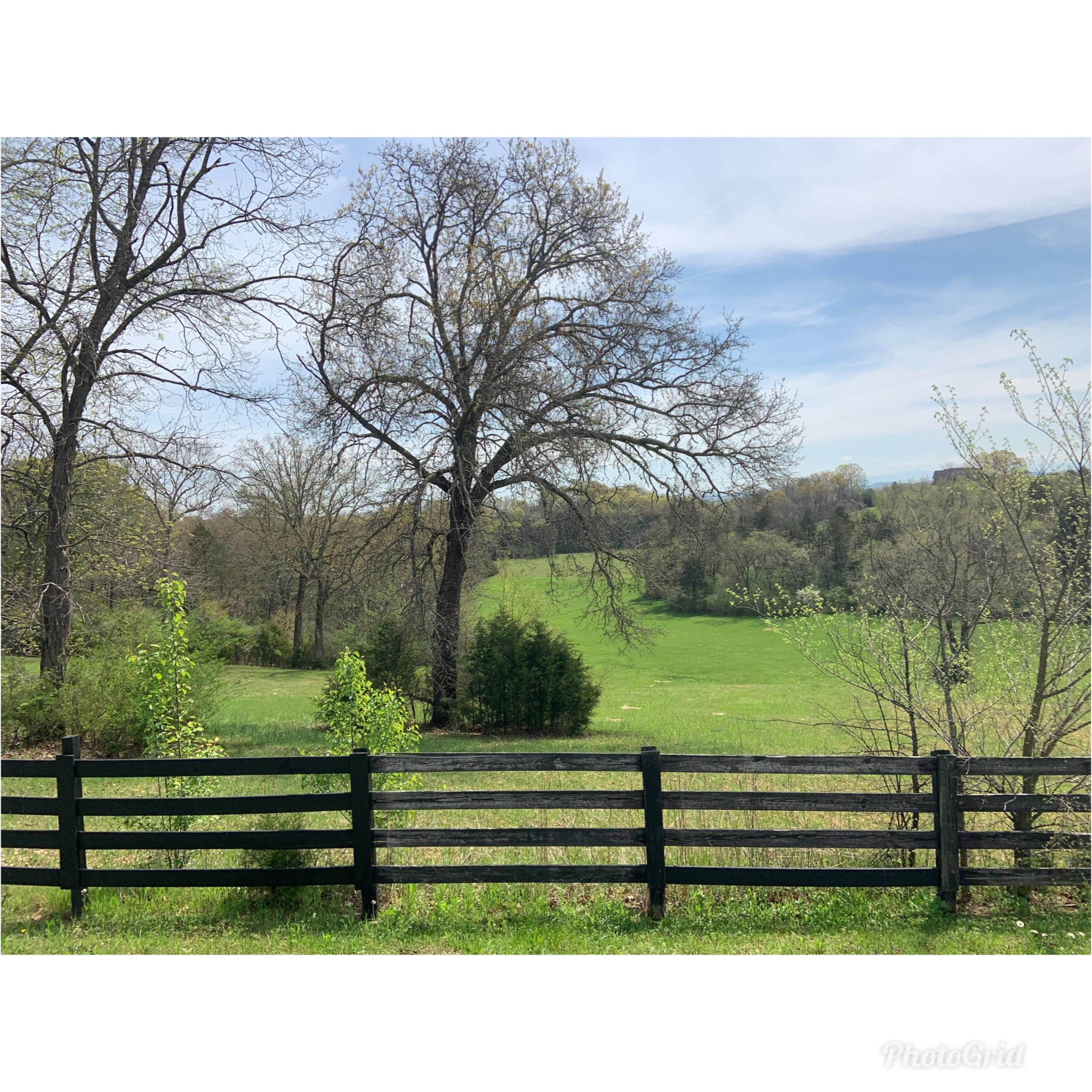 Richland Rd, Blaine, Tennessee 37709, ,Lots & Acreage,For Sale,Richland,1067545