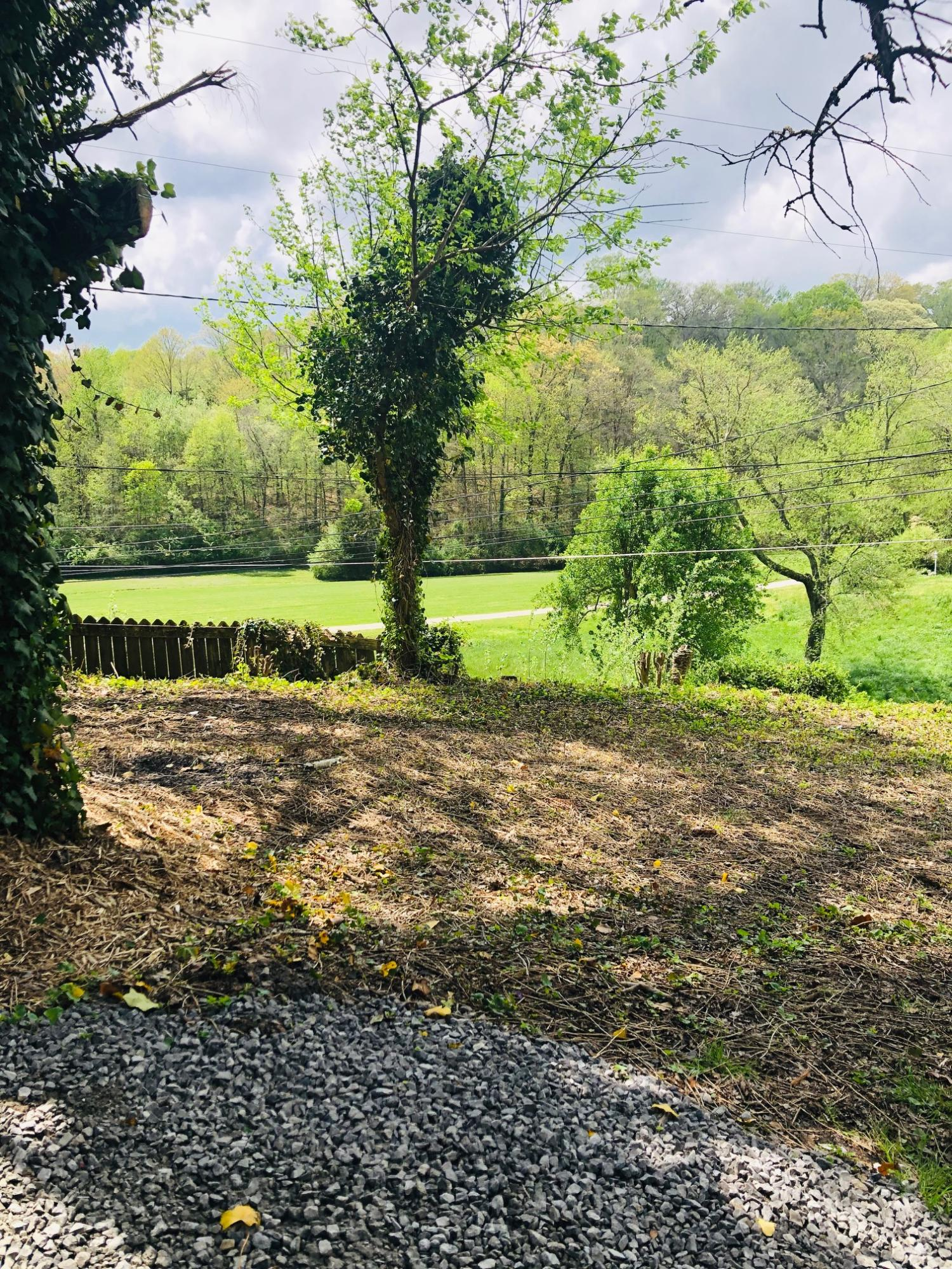 583 Carroll Hollow Road, Clinton, Tennessee, United States 37716, 3 Bedrooms Bedrooms, ,1 BathroomBathrooms,Single Family,For Sale,Carroll Hollow Road,1076652