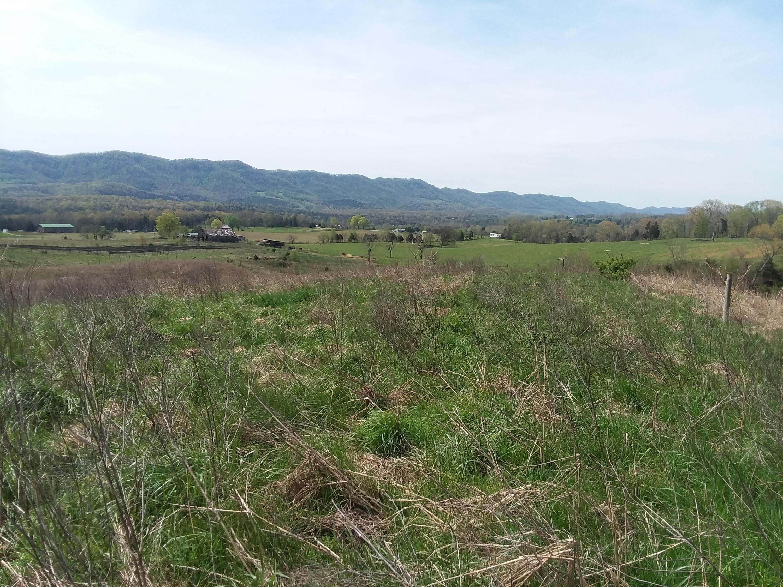 Flatwoods Rd, Jonesville, Virginia 24263, ,Lots & Acreage,For Sale,Flatwoods,1077190