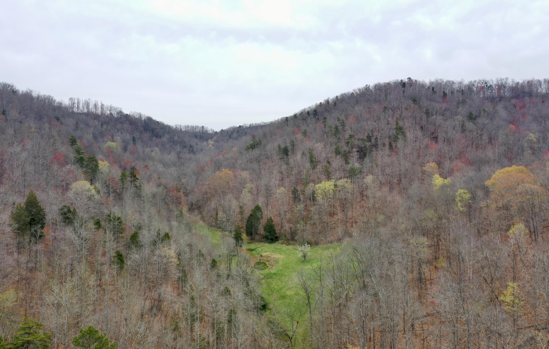 Tbd Jones Ridge Rd- Speedwell- Tennessee- United States 37870, ,Lots & Acreage,For Sale,Tbd Jones Ridge Rd,950002
