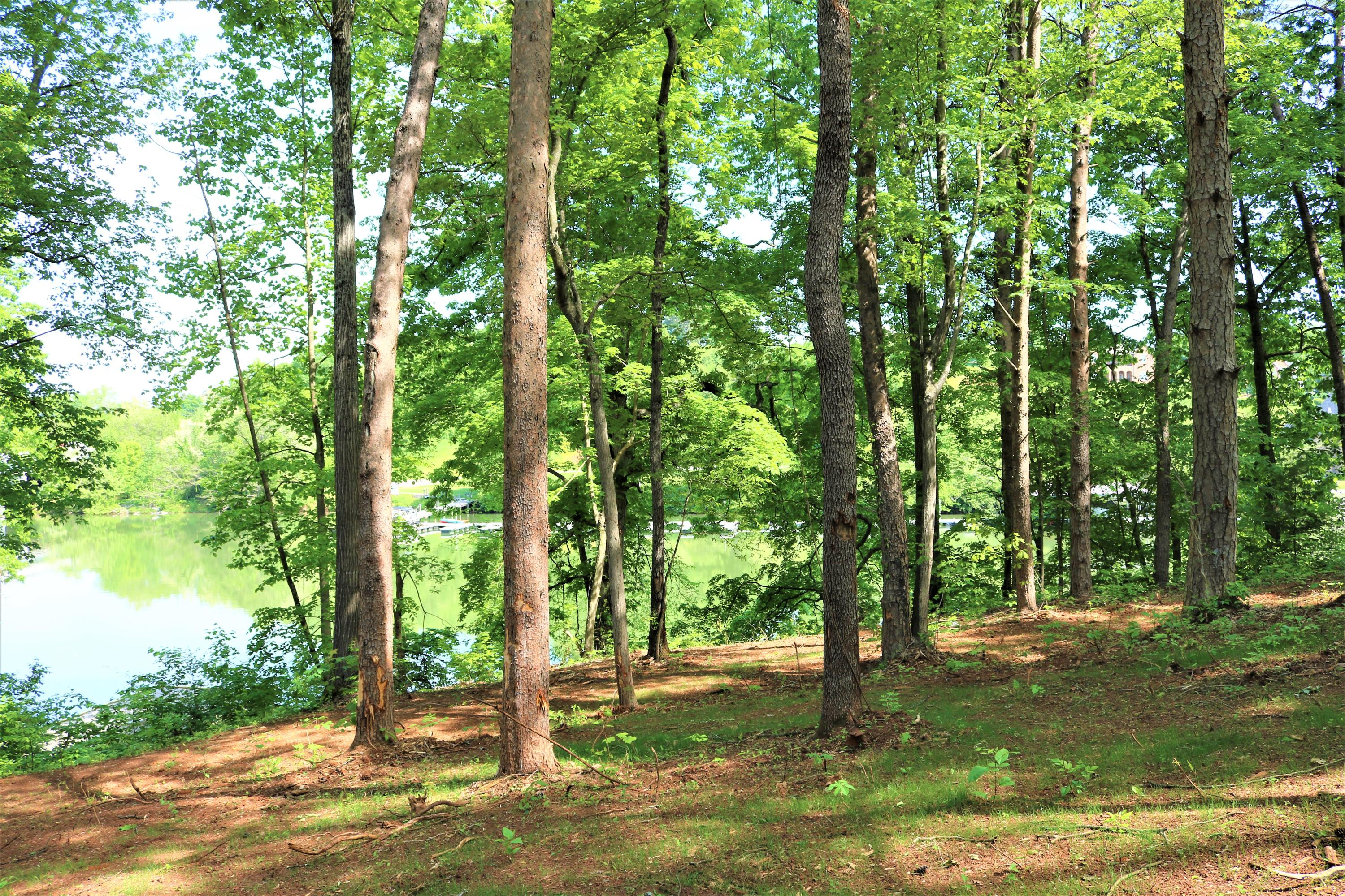Rivertrace Blvd, Knoxville, Tennessee 37920, ,Lots & Acreage,For Sale,Rivertrace,1062671