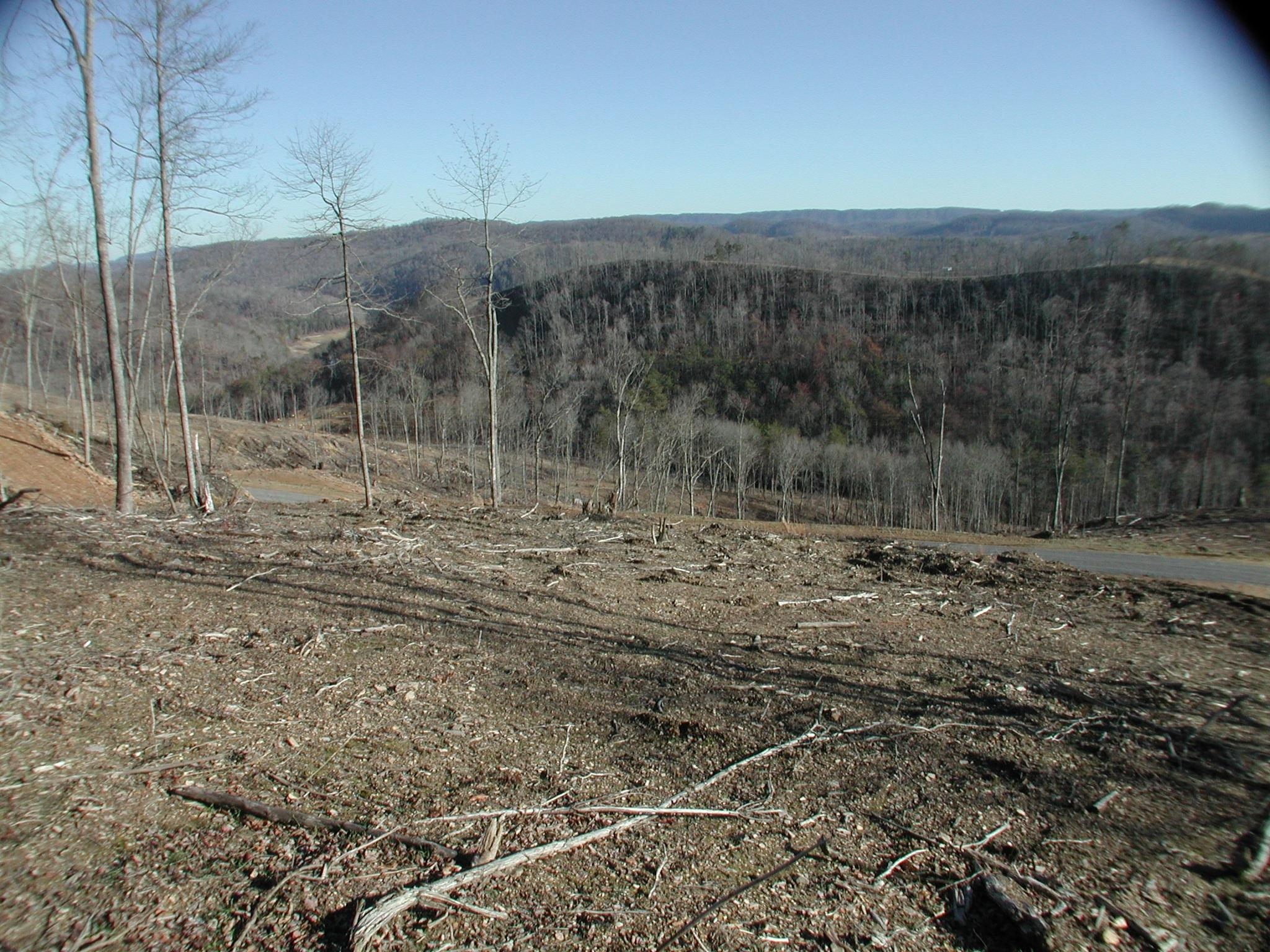 Lot 592 Whistle Valley Rd: