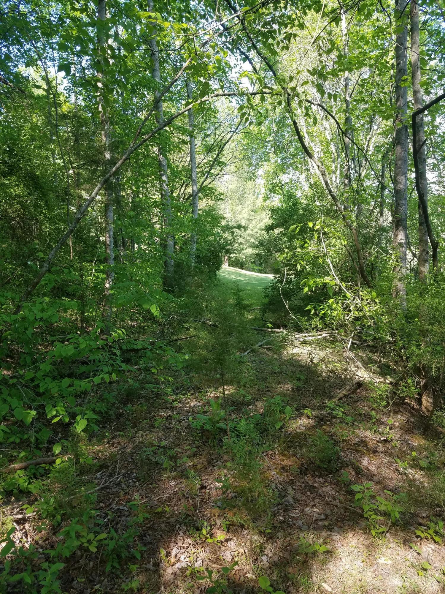 Old Leadmine Bend Rd: