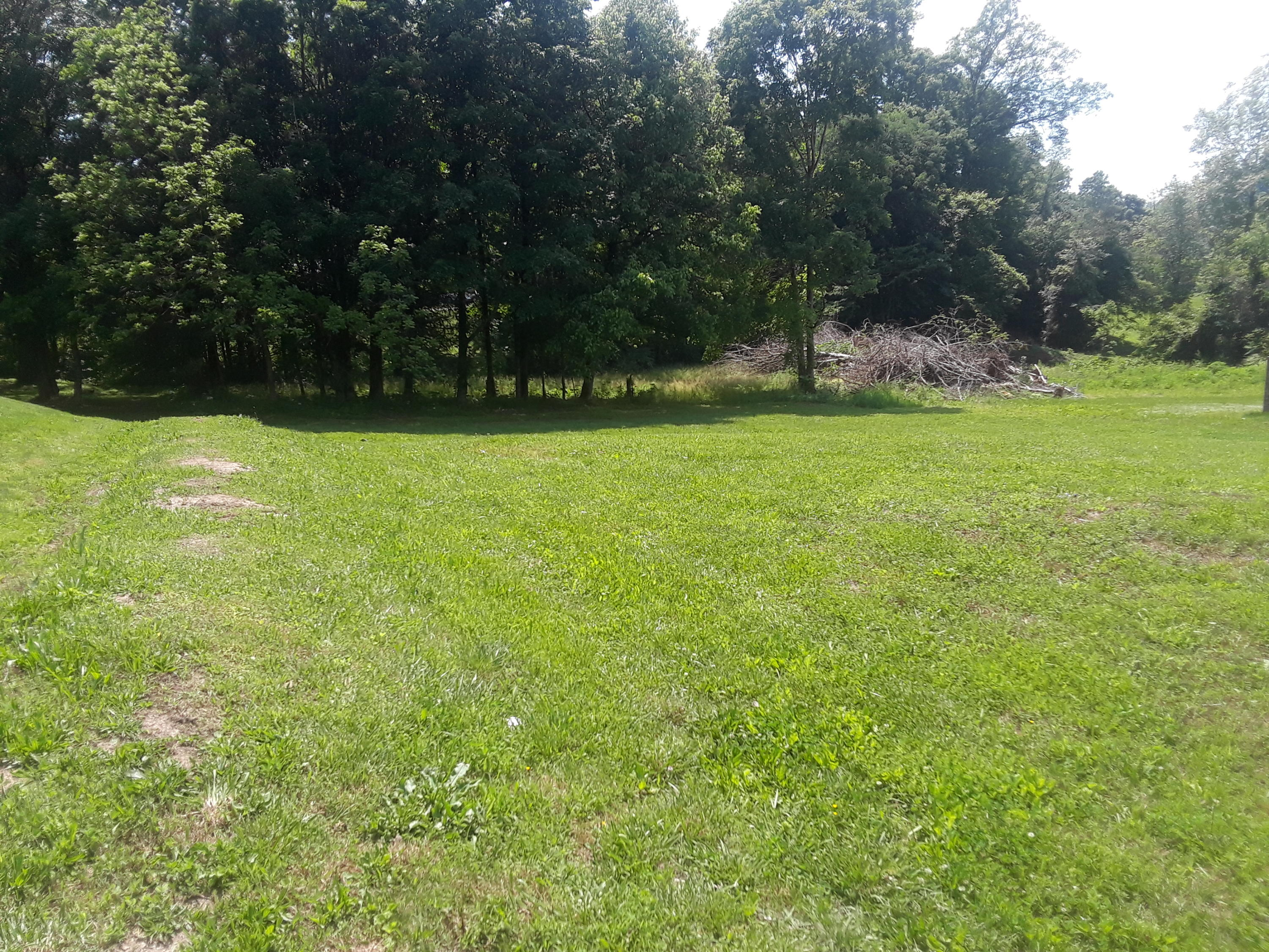 Timber Creek Rd, Maynardville, Tennessee 37807, ,Lots & Acreage,For Sale,Timber Creek,1079938