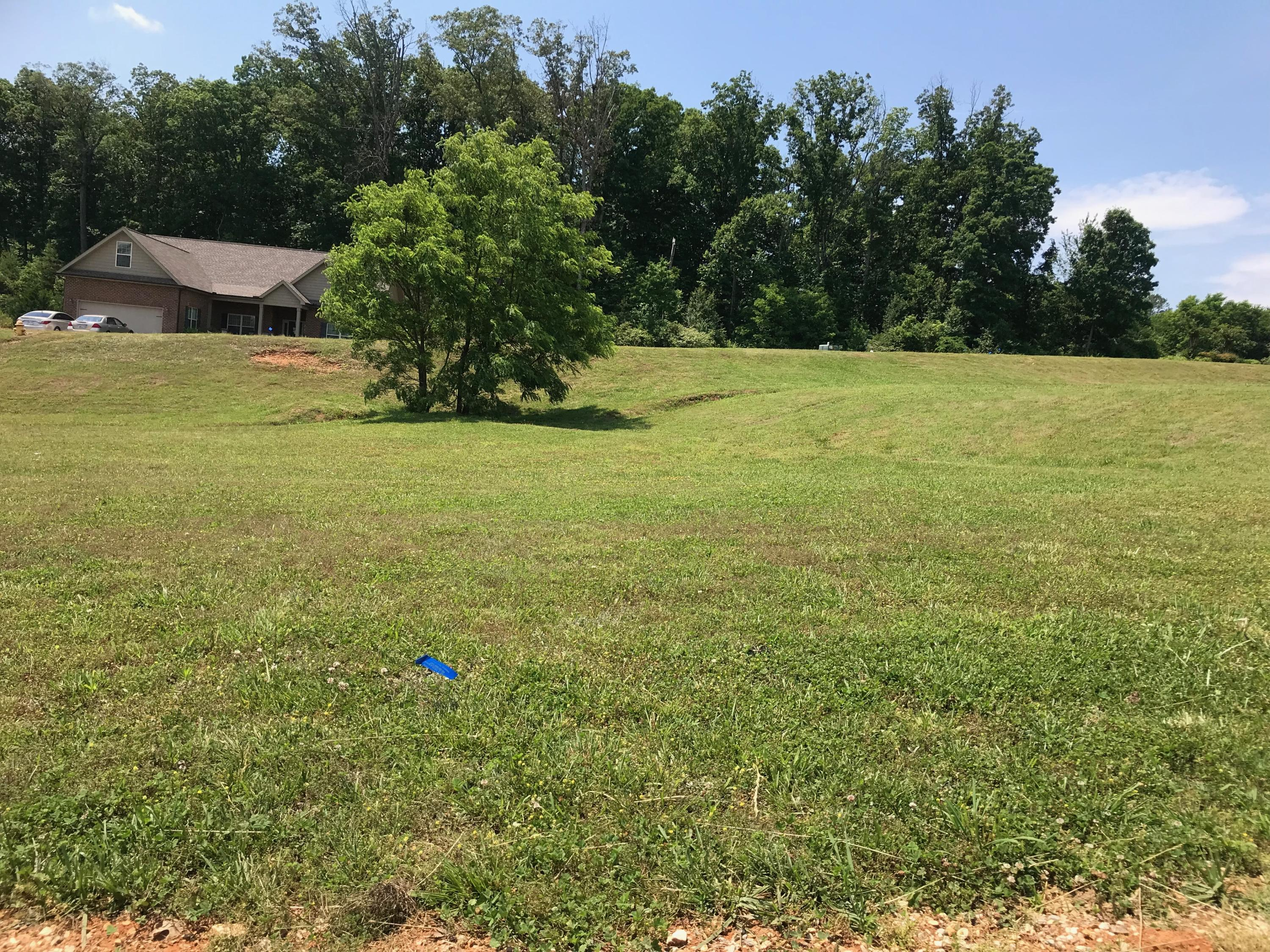 546 Jacksonian Way, Lenoir City, Tennessee 37772, ,Lots & Acreage,For Sale,Jacksonian,1080821