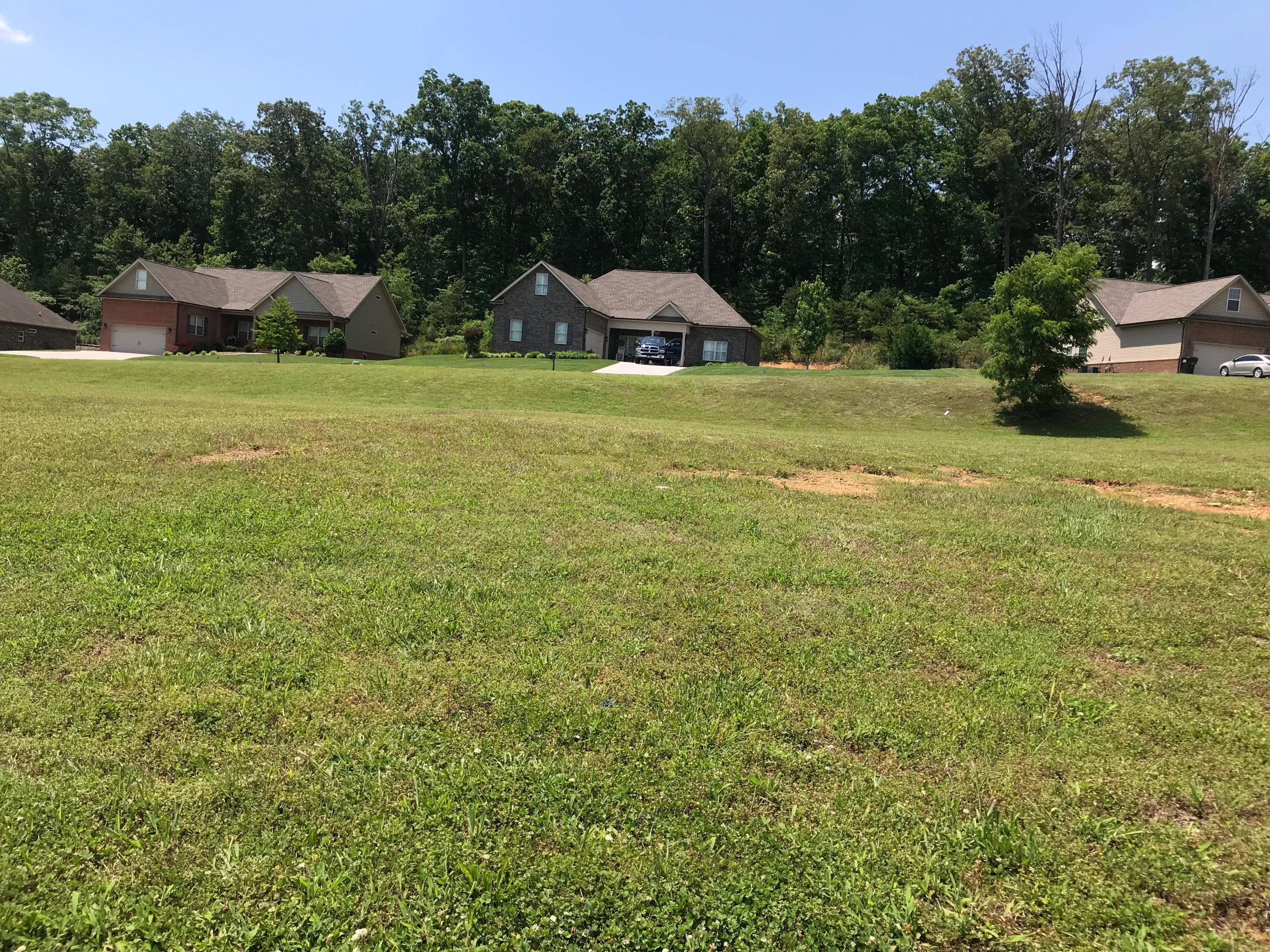 548 Jacksonian Way, Lenoir City, Tennessee 37772, ,Lots & Acreage,For Sale,Jacksonian,1080822