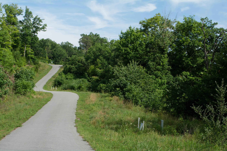 Beehive Lane: