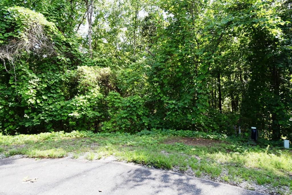 312 Elohi Trace, Loudon, Tennessee 37774, ,Lots & Acreage,For Sale,Elohi,971442