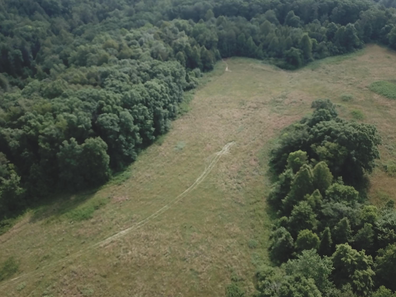 Sexton Loop Road, Oakdale, Tennessee 37829, ,Lots & Acreage,For Sale,Sexton Loop Road,1087017