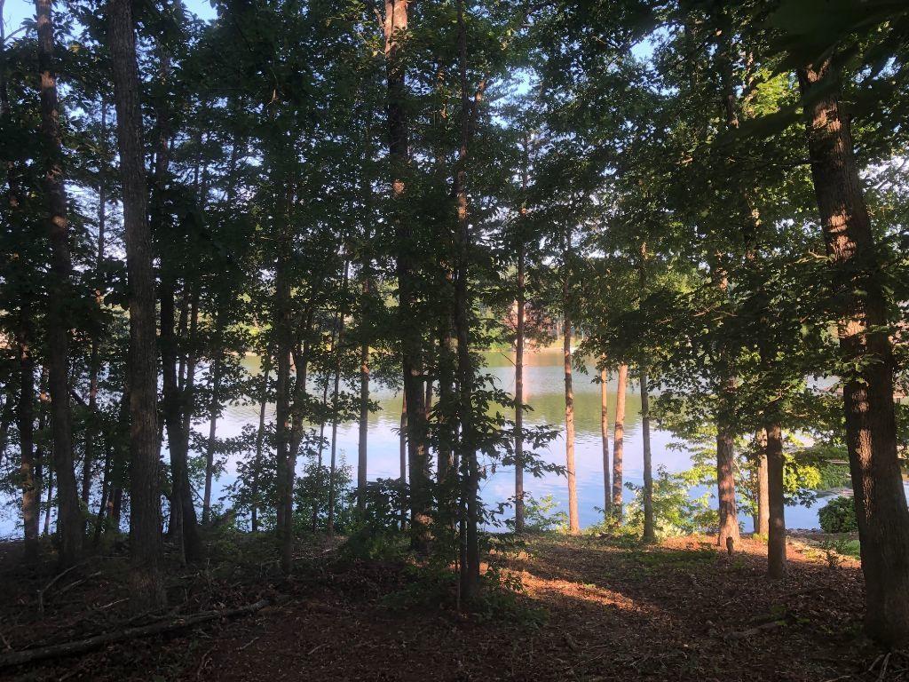 Falcon Trail: