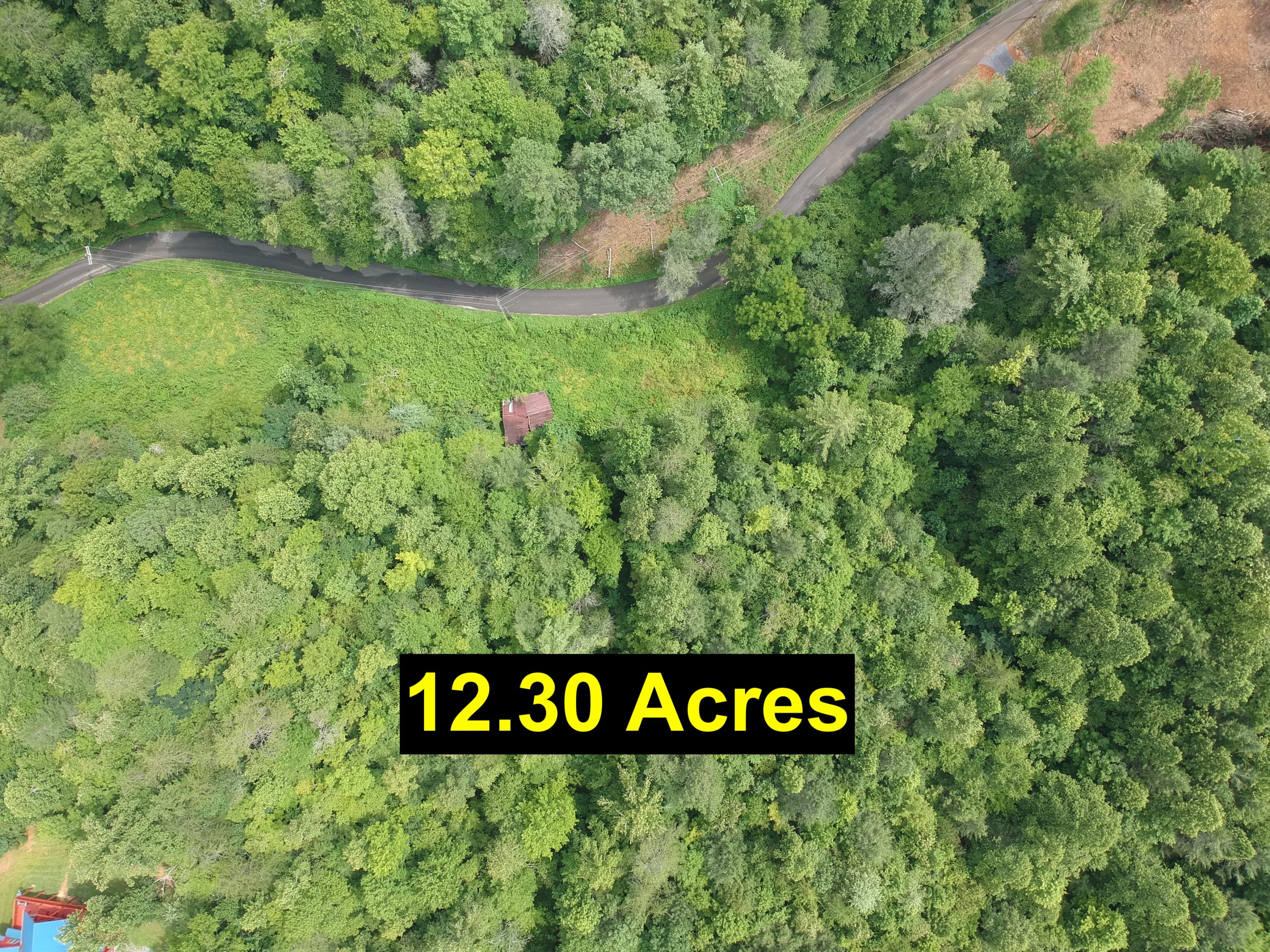 Grassy Branch Rd, Sevierville, Tennessee 37876, ,Lots & Acreage,For Sale,Grassy Branch,1091295