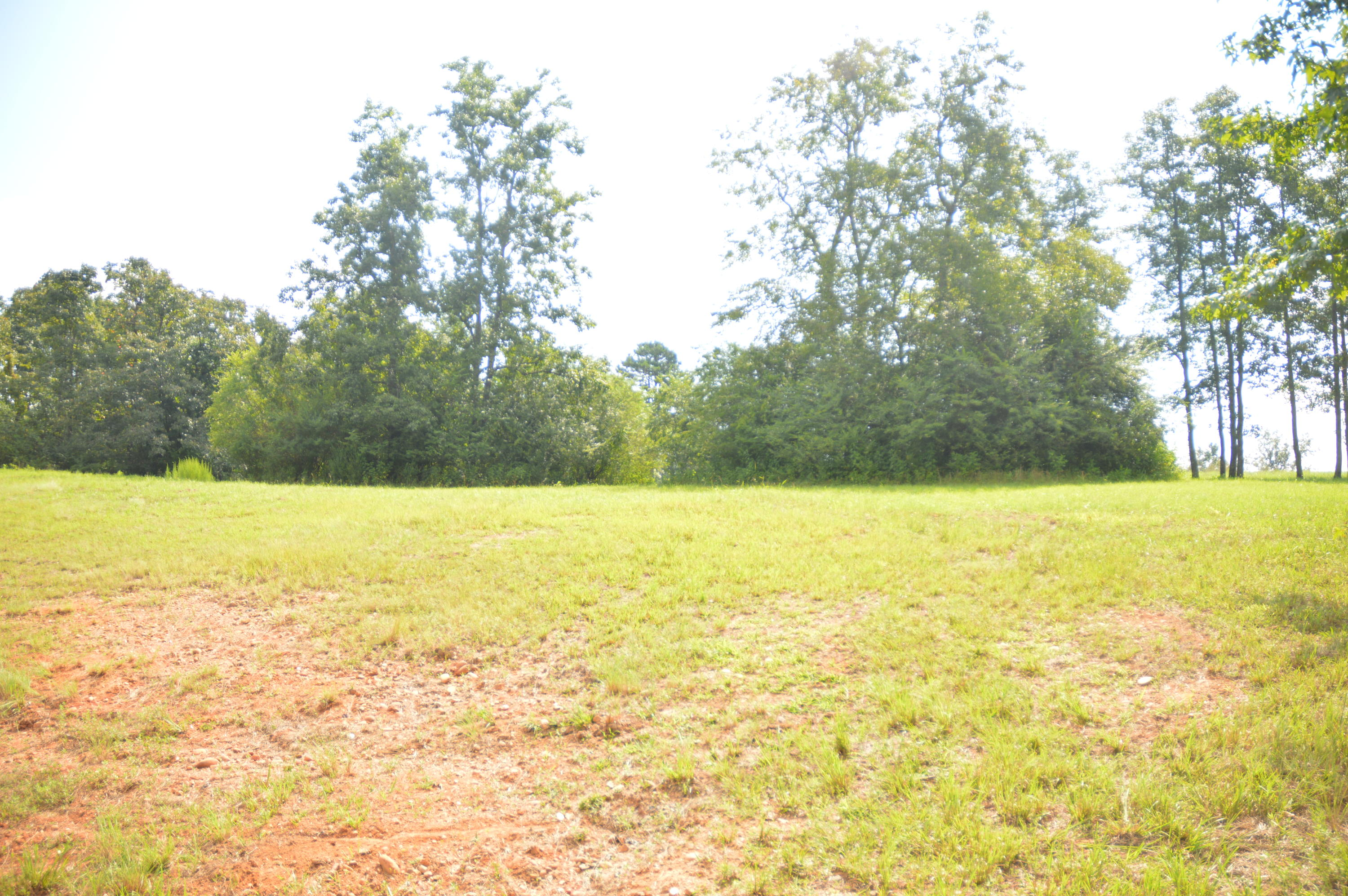 108 Docks Of The Bay, Harriman, Tennessee, United States 37748, ,Lots & Acreage,For Sale,Docks Of The Bay,1091417