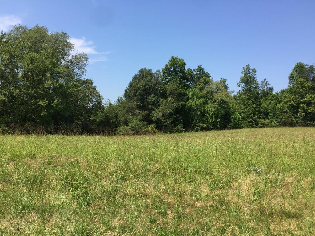 14902 Lantana Road, Crossville, Tennessee, United States 38572, ,Lots & Acreage,For Sale,Lantana Road,1091634