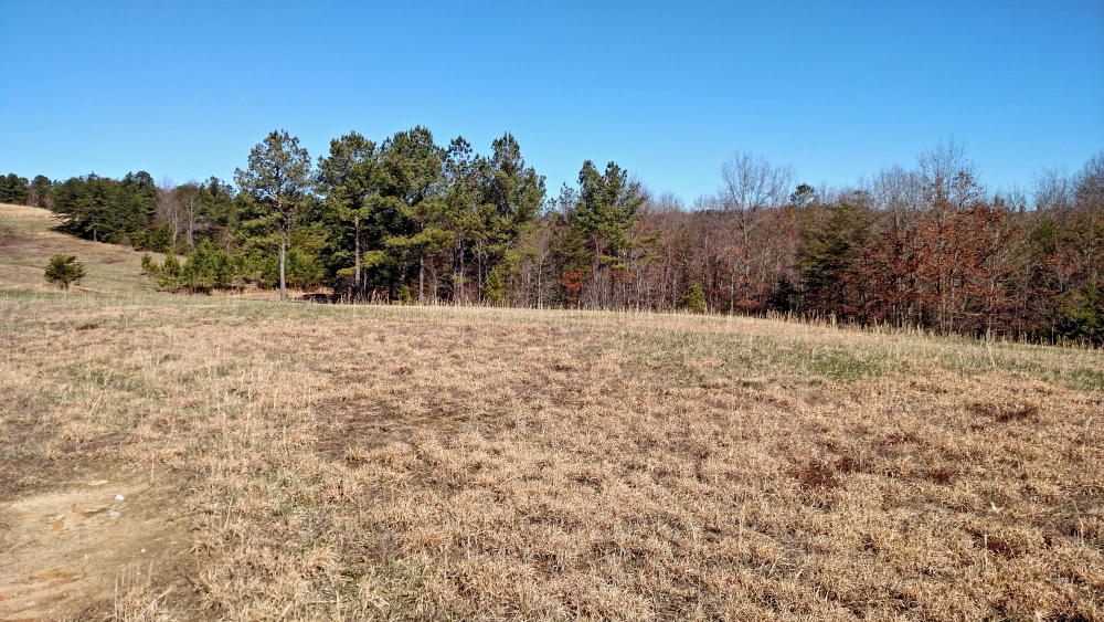 Lot 21 Vista View Pkwy- Jamestown- Tennessee 38556, ,Lots & Acreage,For Sale,Vista View,1094167