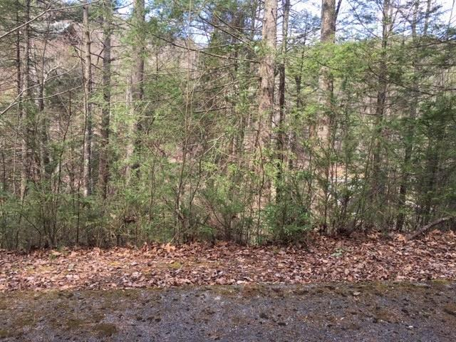 503 Stonegate Way, Townsend, Tennessee 37882, ,Lots & Acreage,For Sale,Stonegate,1095649